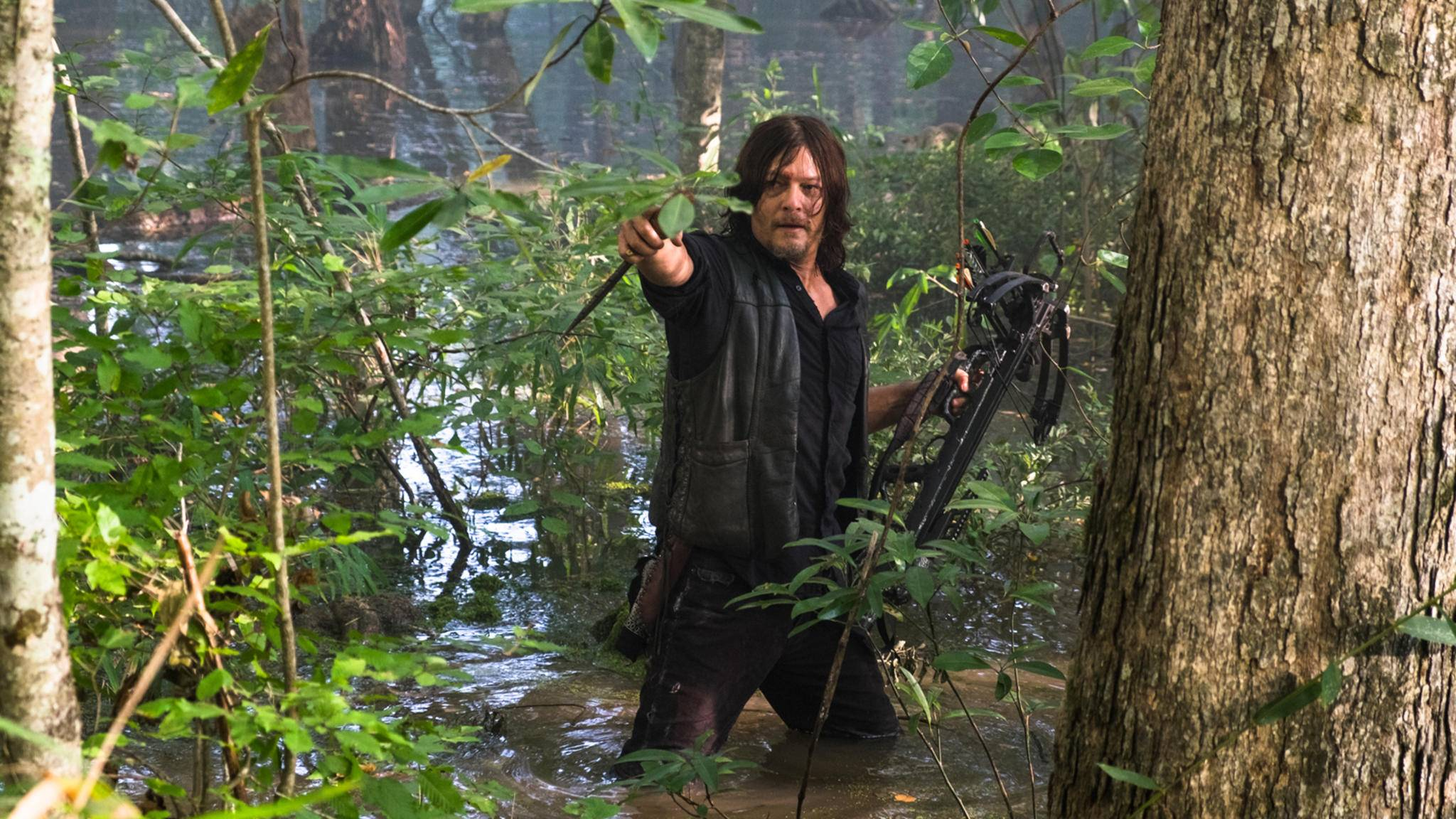Trotzdem versucht Daryl in Episode 11, einen sicheren Weg zu finden.