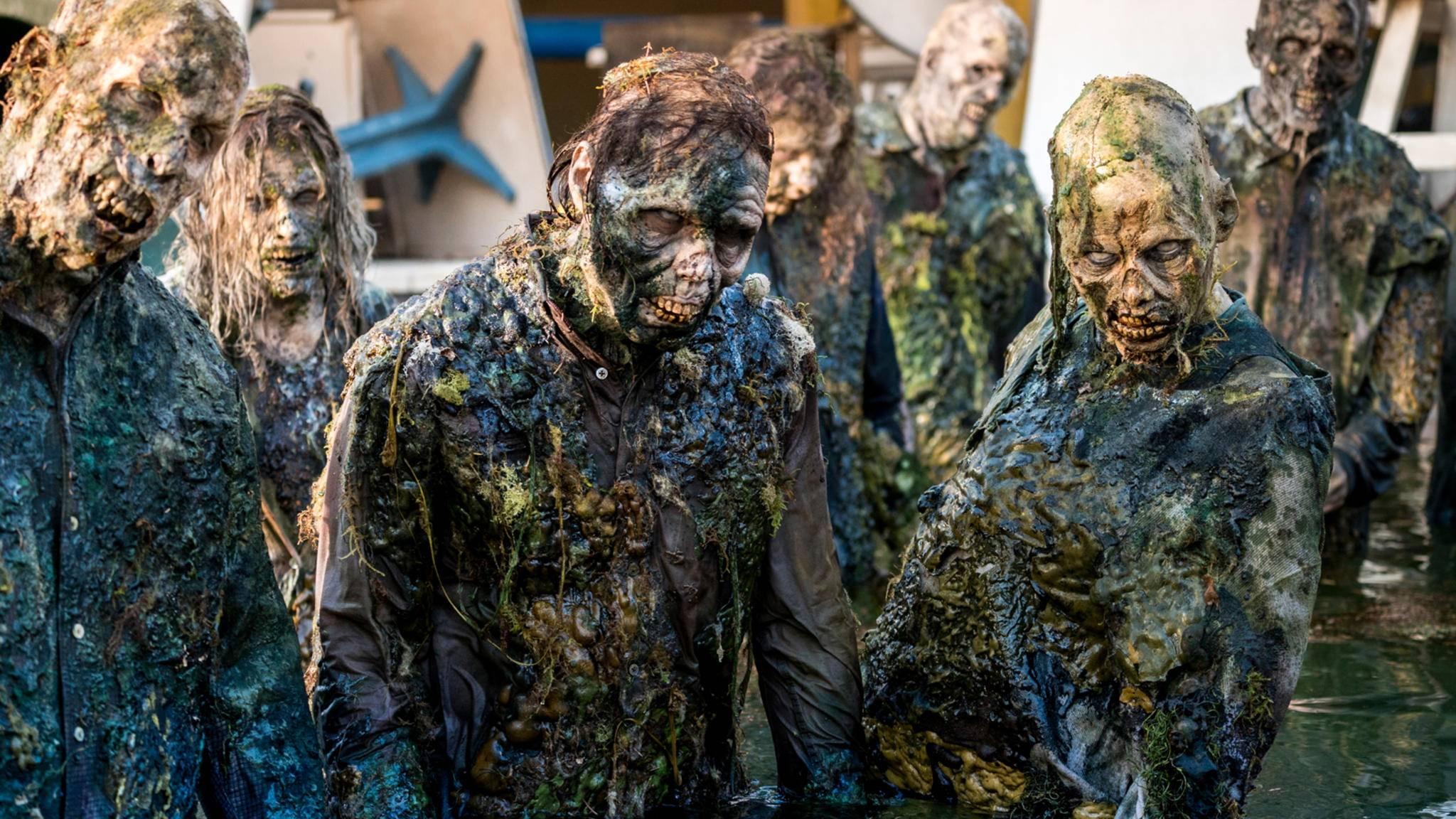 """In Staffel 4 von """"Fear the Walking Dead"""" gibt es gleich mehrere böse Überraschungen für die Clark-Familie."""