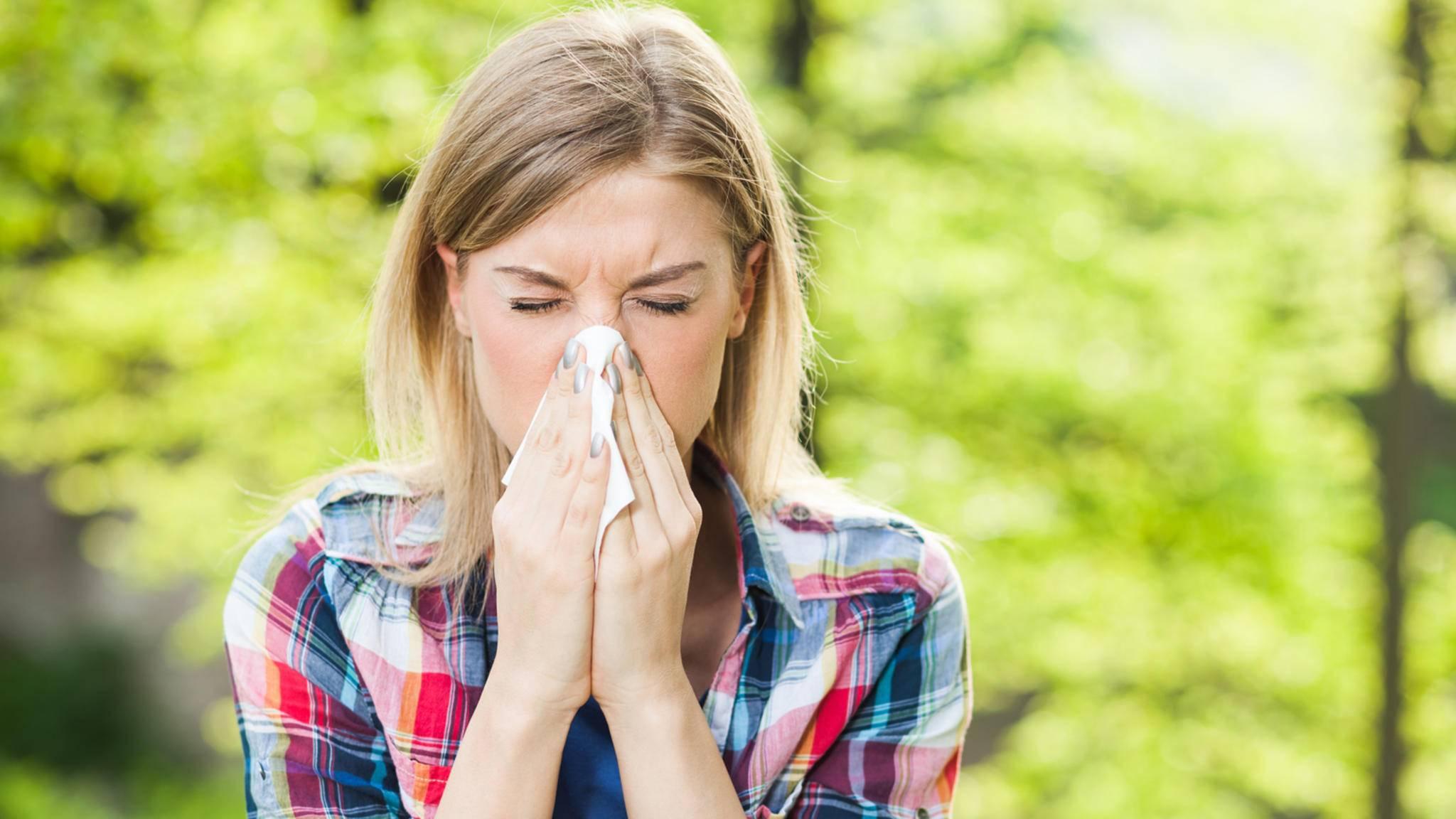 Pollenflug-Apps können dabei helfen, gut durch die Allergiezeit zu kommen.