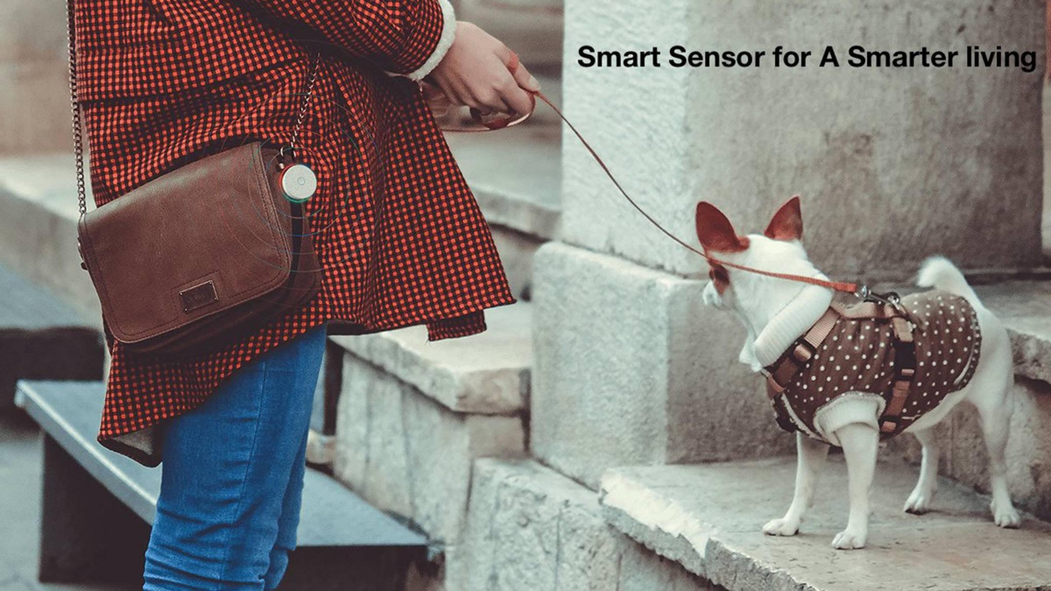 Klein und clever: An der Tasche angebracht hat Sense auch beim Gassigehen das Umgebungsklima im Blick.