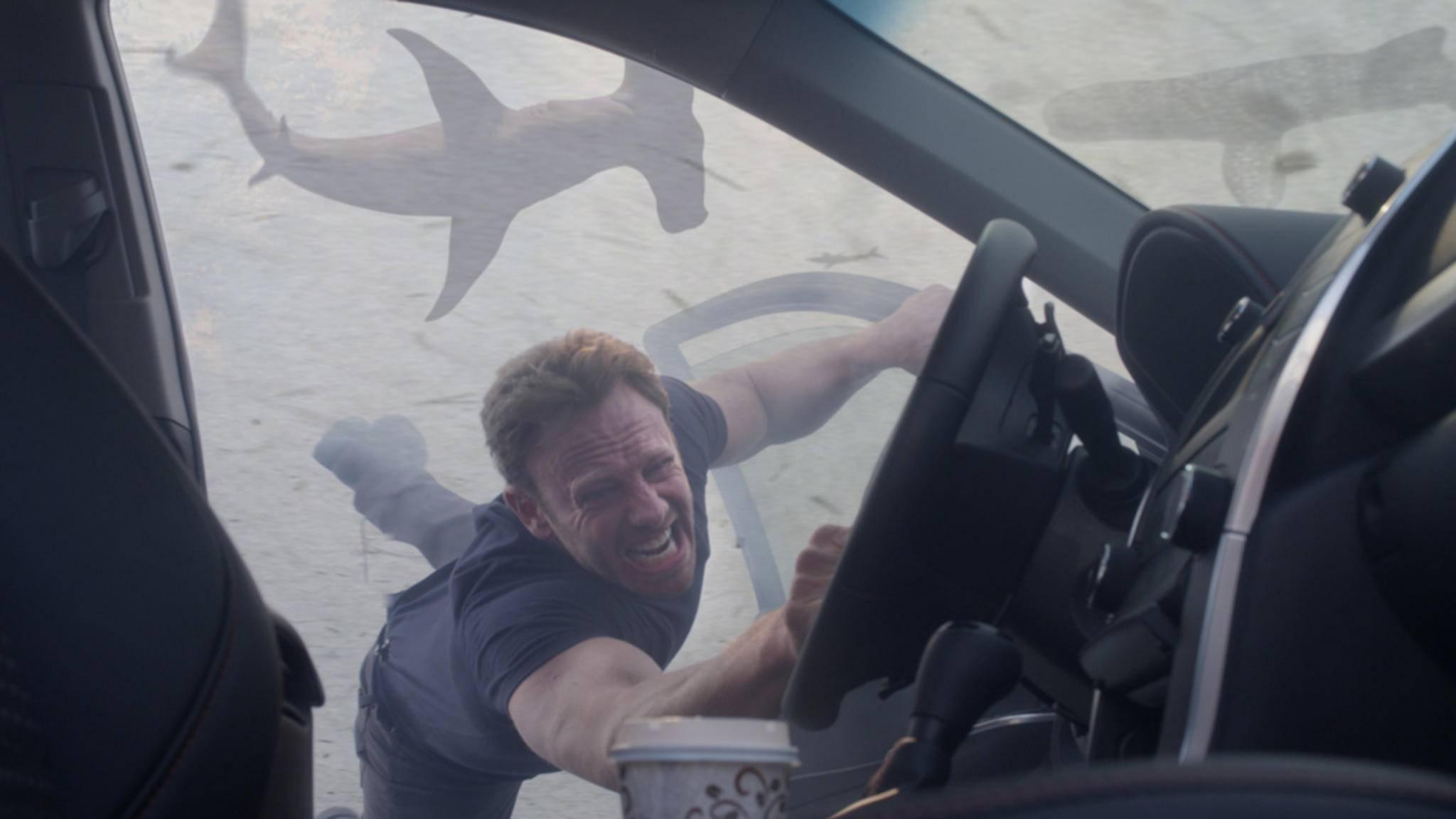 Die fliegenden Haie werden uns fehlen!