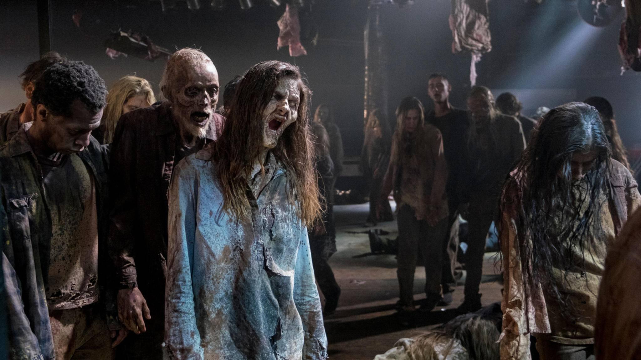 """Sind die Quoten von """"The Walking Dead"""" noch zu retten?"""