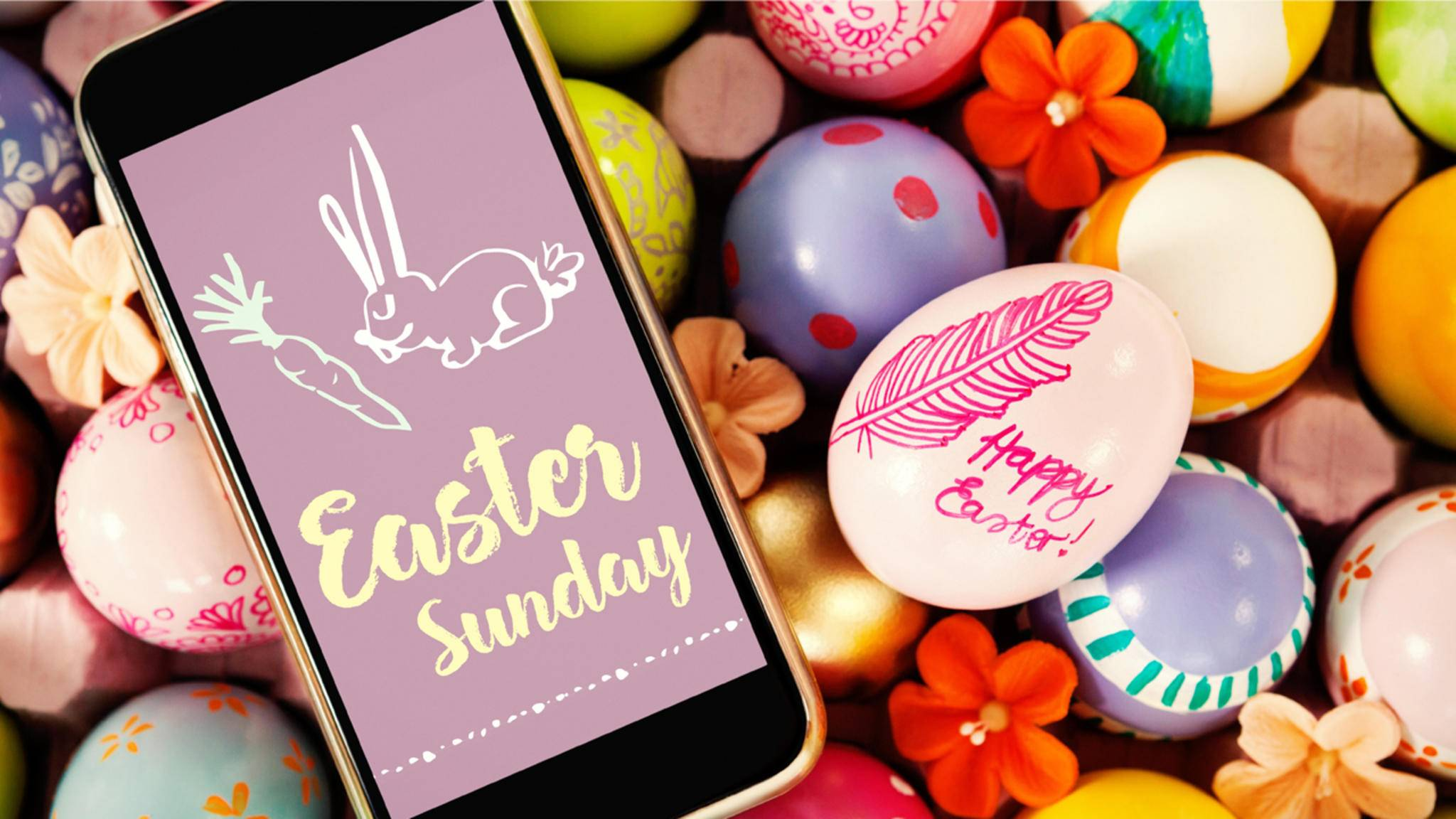 Wünsche Deinen Freunden frohe Ostern mit lustigen Bilder, Sprüchen oder Videos bei WhatsApp.