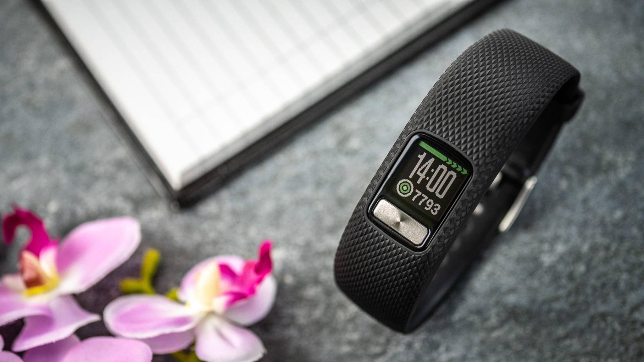 Für Einsteiger bietet die Garmin vívofit 4 Fitness-Tracking ohne Schnickschnack.