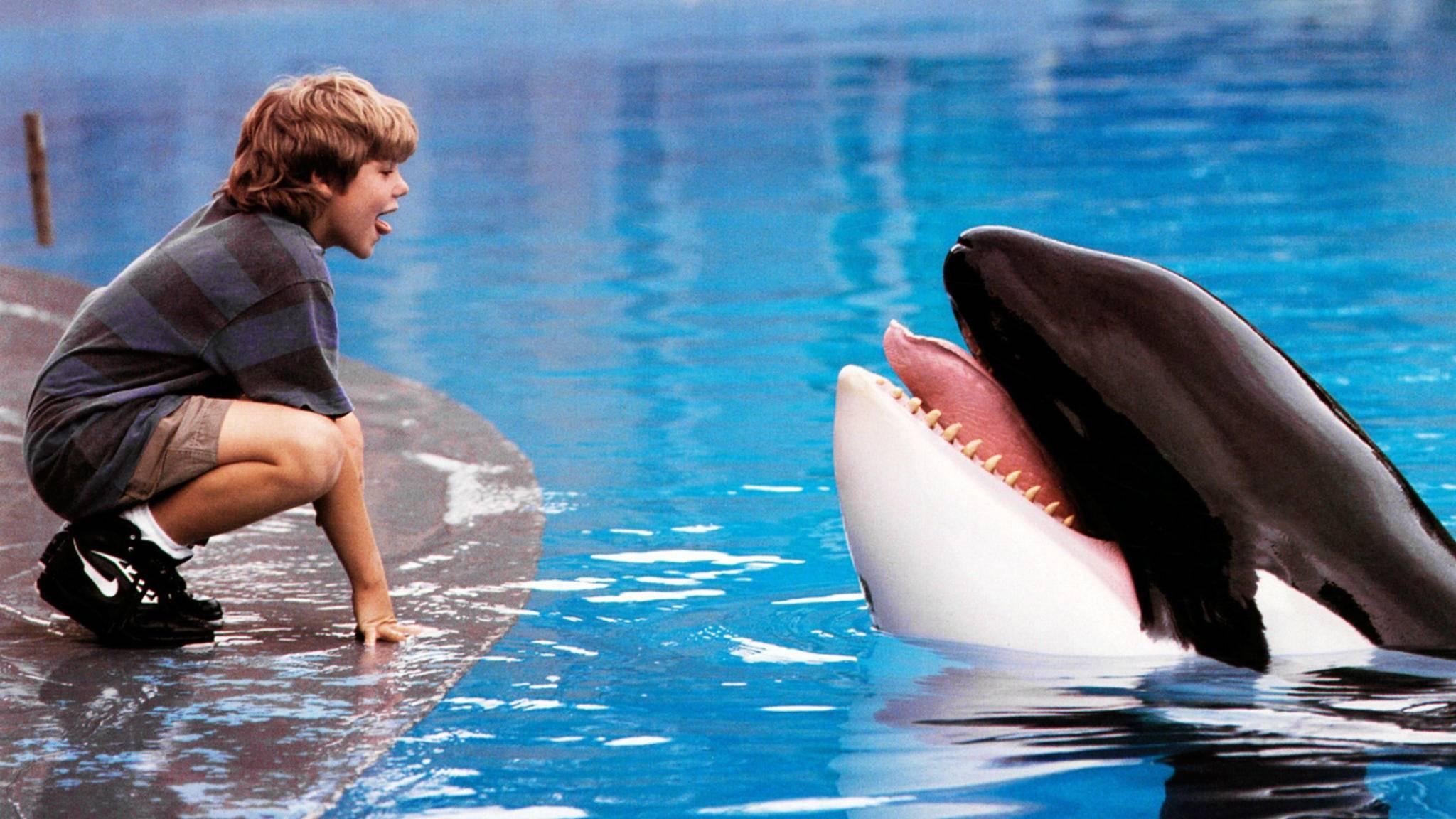 Zwischen Jesse (Jason James Richter) und Willy entwickelt sich eine ungewöhnliche Freundschaft.