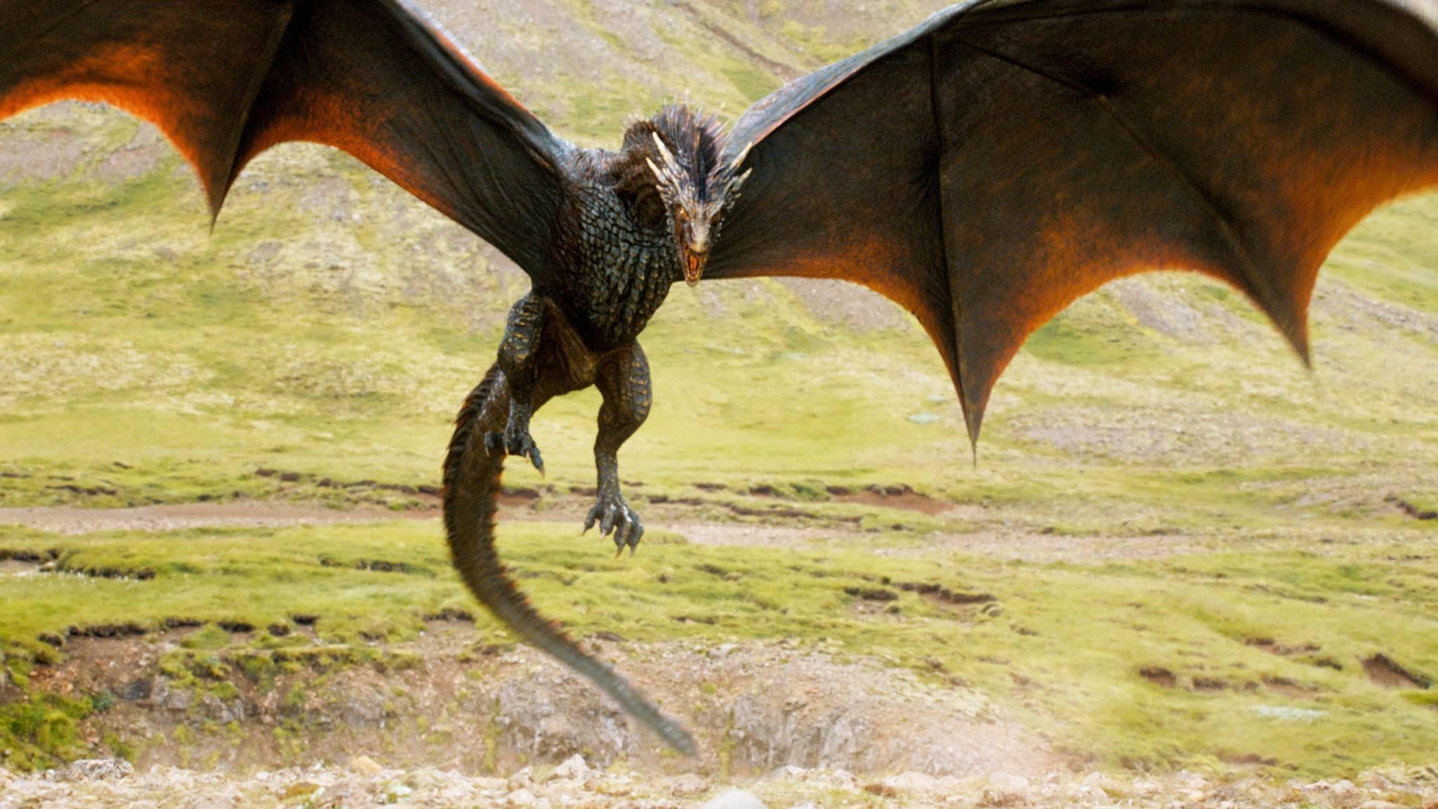 """Im """"Game of Thrones""""-Spin-off dürfte es durchaus wieder imposante Drachen zu sehen geben."""