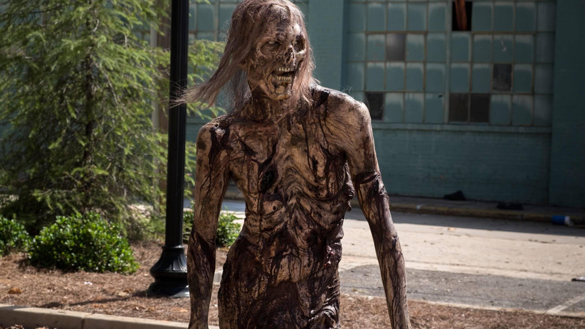 """Allein auf weiter Flur? Nach Staffel 9 könnte """"The Walking Dead"""" Fan-mäßig ziemlich verlassen dastehen."""