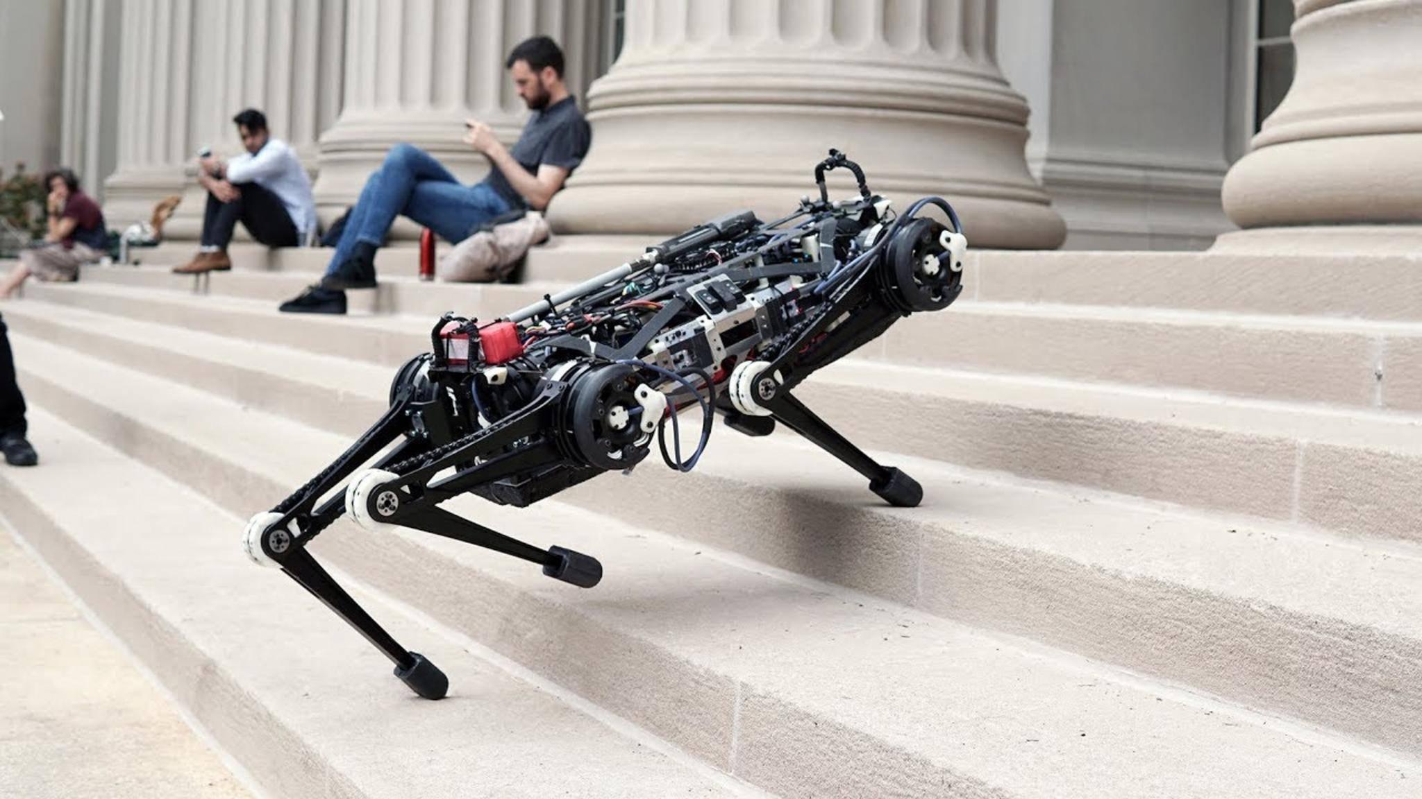 Der MIT-Roboter Cheetah läuft wie eine Raubkatze.