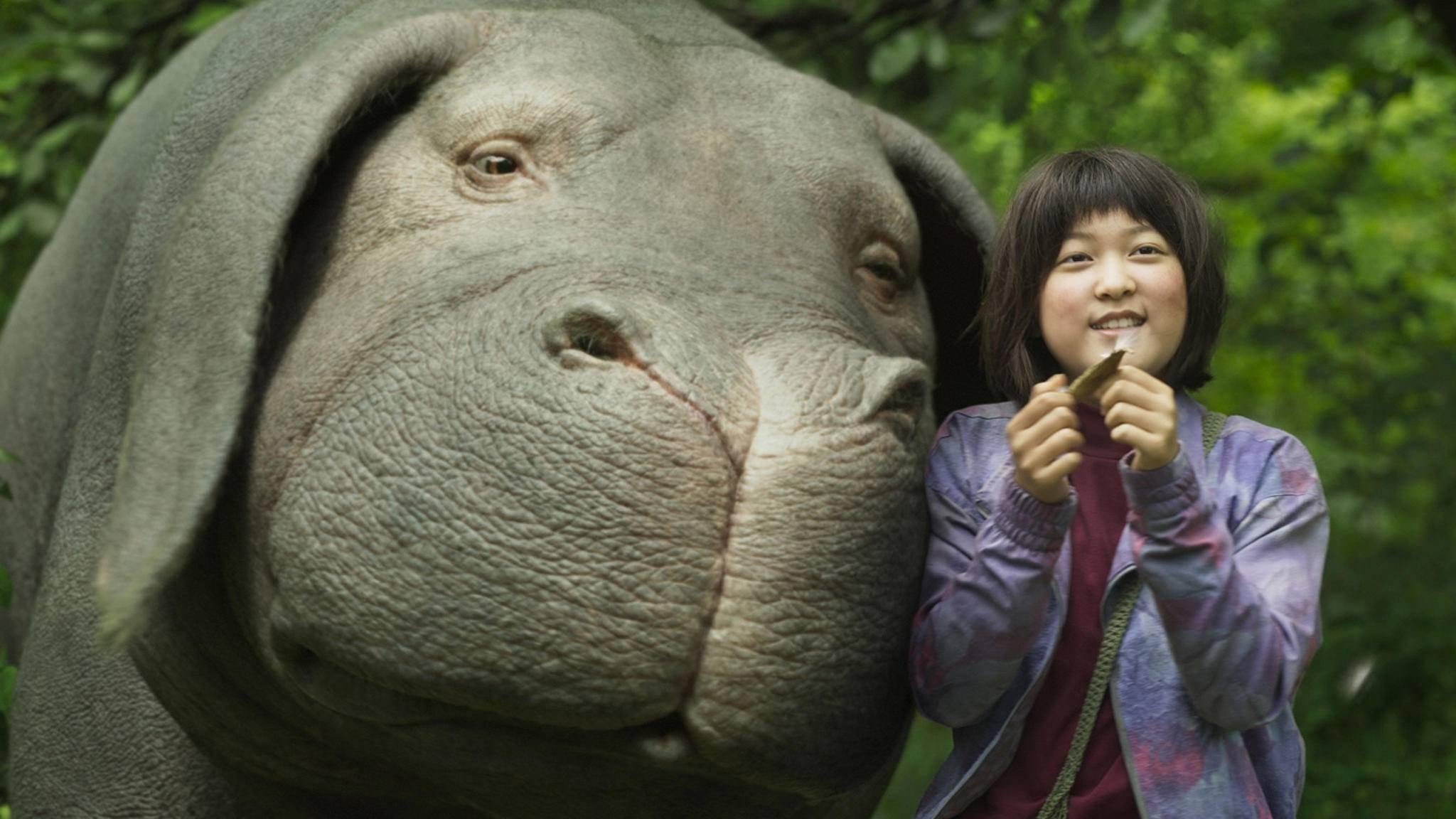 """Mit """"Okja"""" bereicherte 2017 eine koreanisch-amerikanisch Filmproduktion die Liste der asiatischen Filme."""