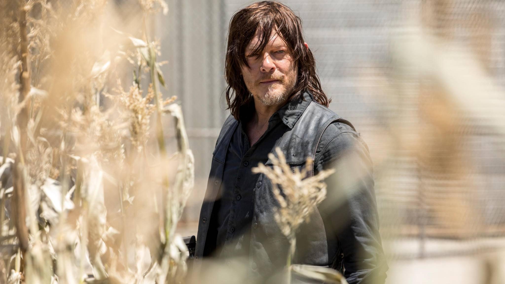 Norman Reedus wird als Daryl in Staffel 9 nicht (alleine) die Führung übernehmen.