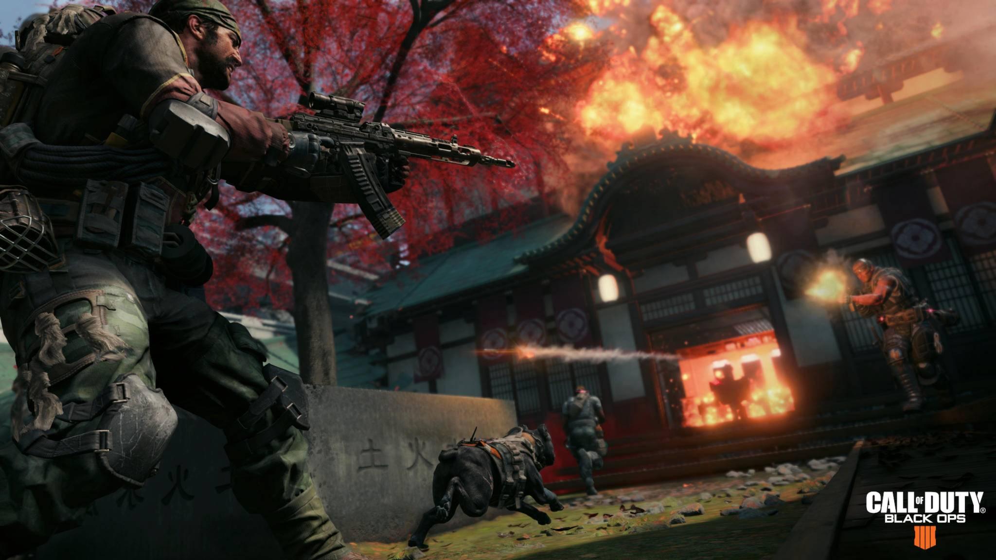 """Wenn Treyarch seine Hausaufgaben gut macht, erwartet uns zum Release ein gut ausbalanciertes """"Call of Duty: Black Ops 4""""."""