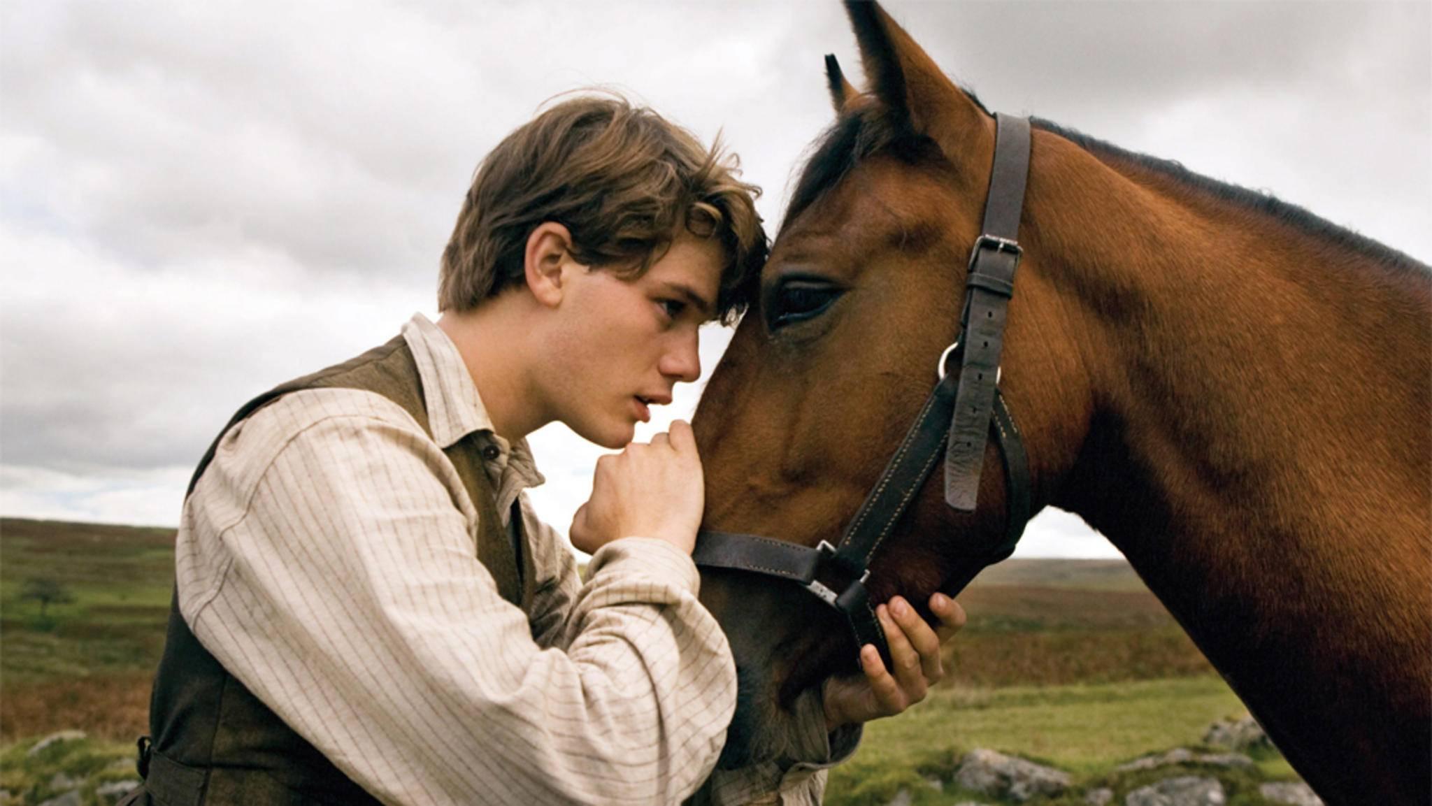 """Die Verbindung zwischen Pferd und Reiter steht in Pferdefilmen wie """"Gefährten"""" im Fokus."""