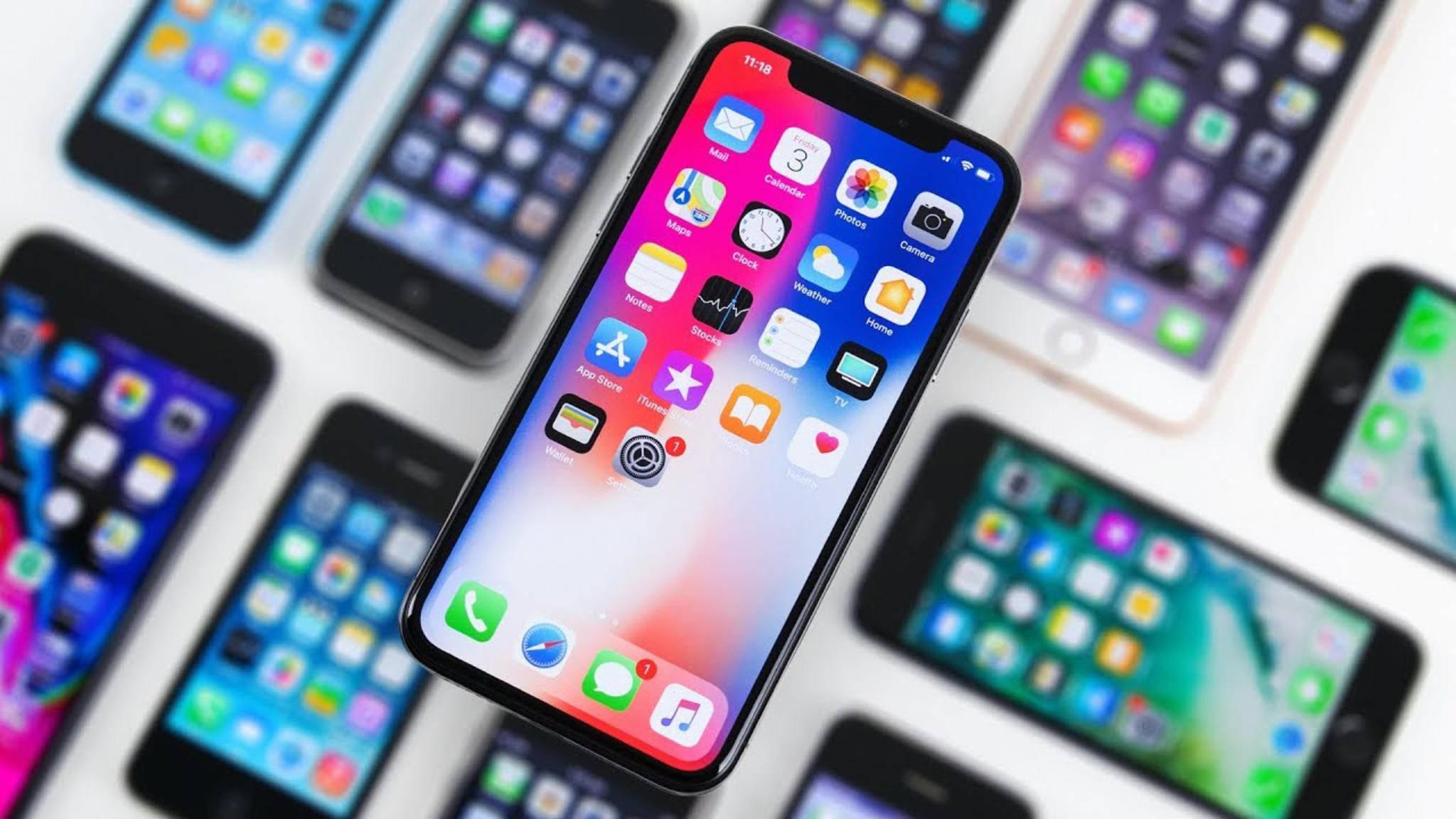Mit dem iPhone X hat Apple sehr viel Geld verdient.