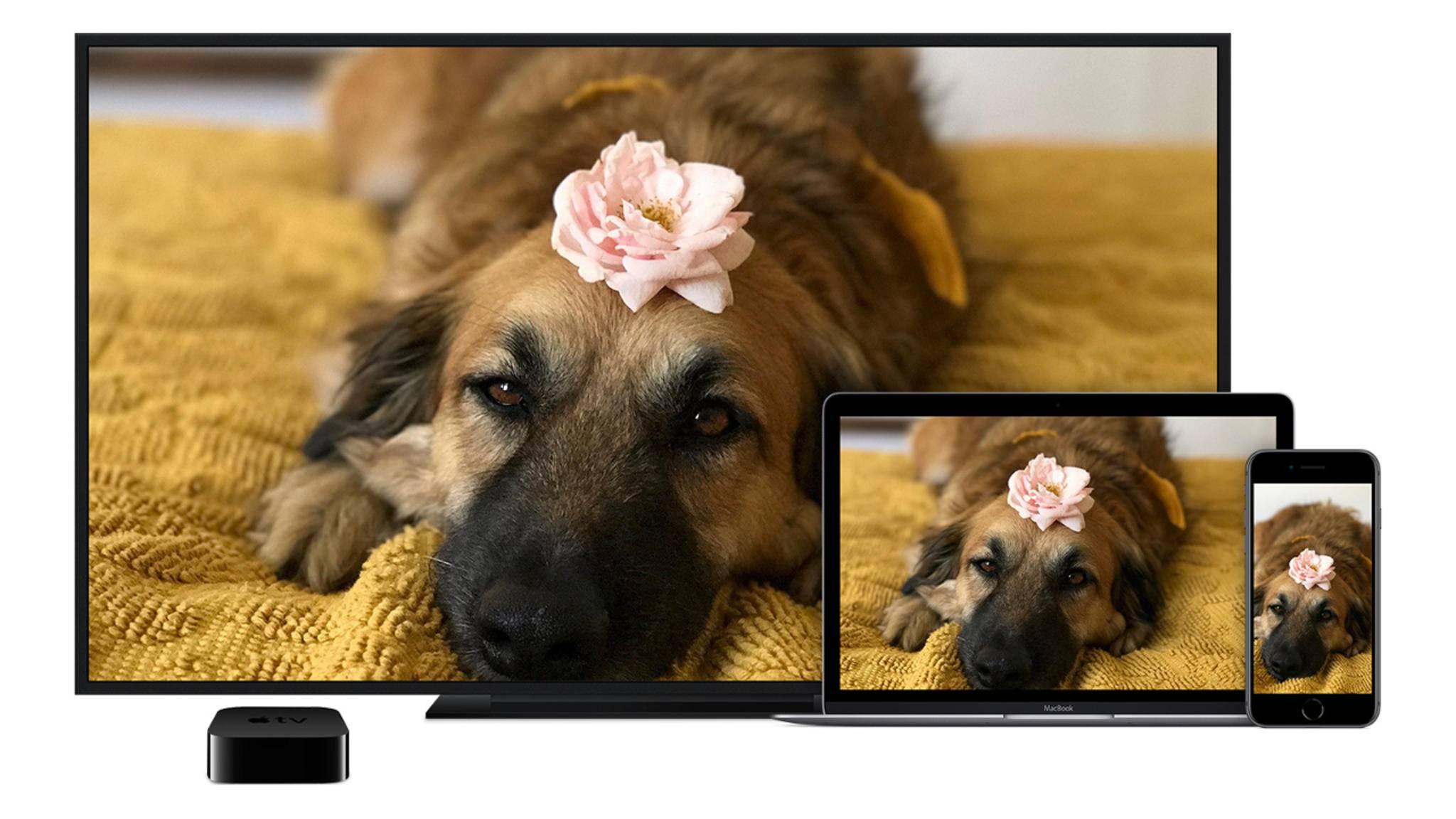 Mit Apple TV kannst Du Deinen iPhone-Bildschirm ganz einfach auf dem Fernseher spiegeln.