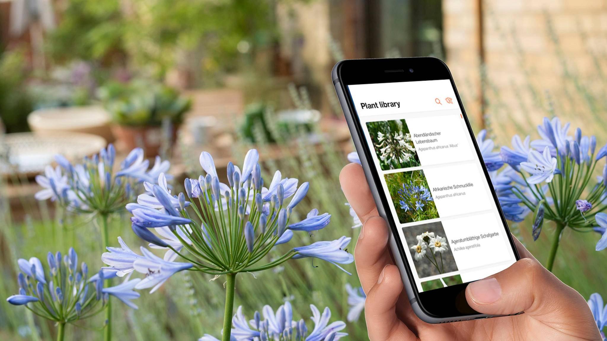 App statt dickem Nachschlagewerk: Gardenas Smart-System-App wurde um ein Pflanzenlexikon erweitert.