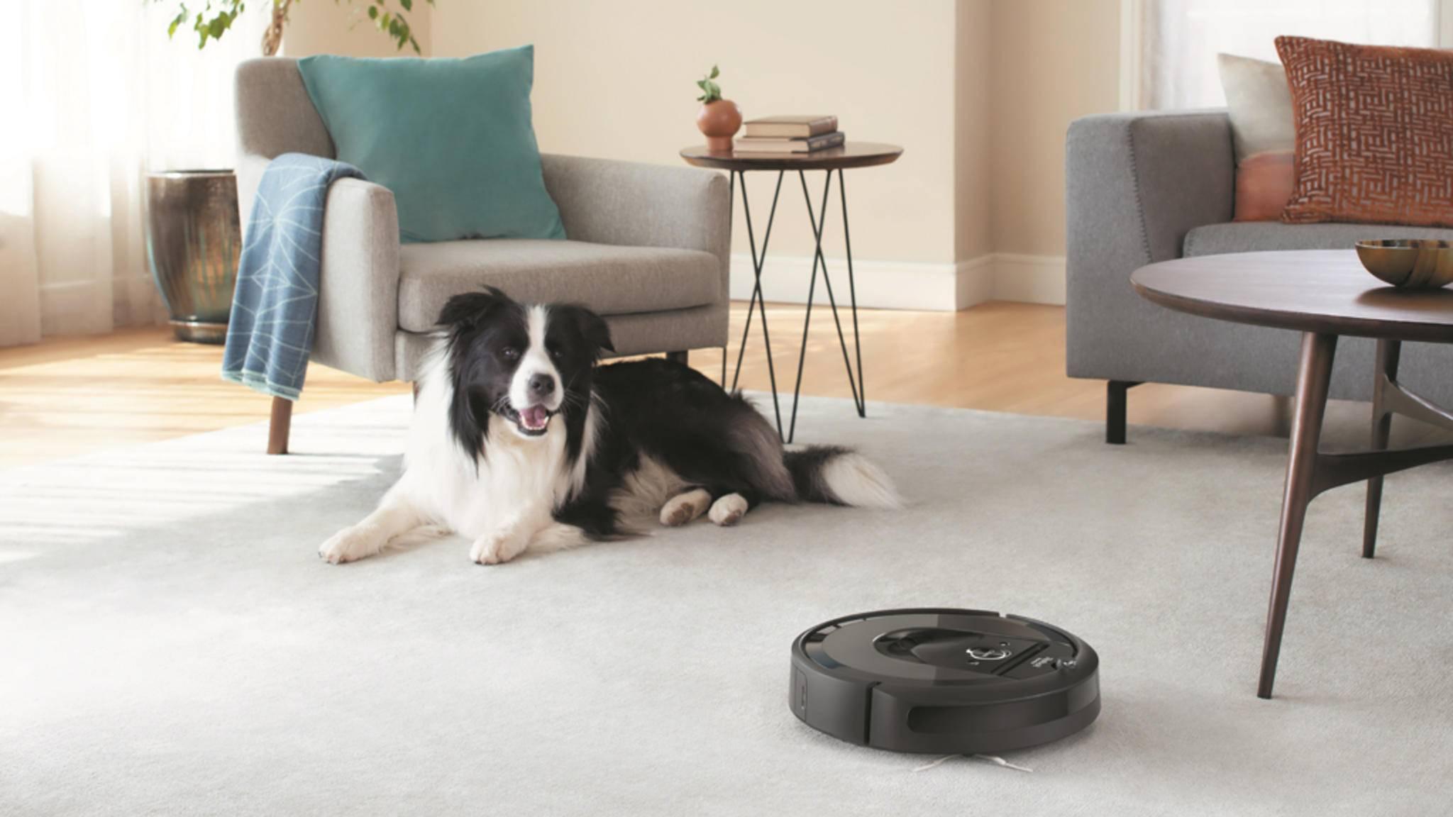 No-Saug-Zone: Den Futter- und Trinkbereich Deines Vierbeiners umkurvt der Roomba künftig.