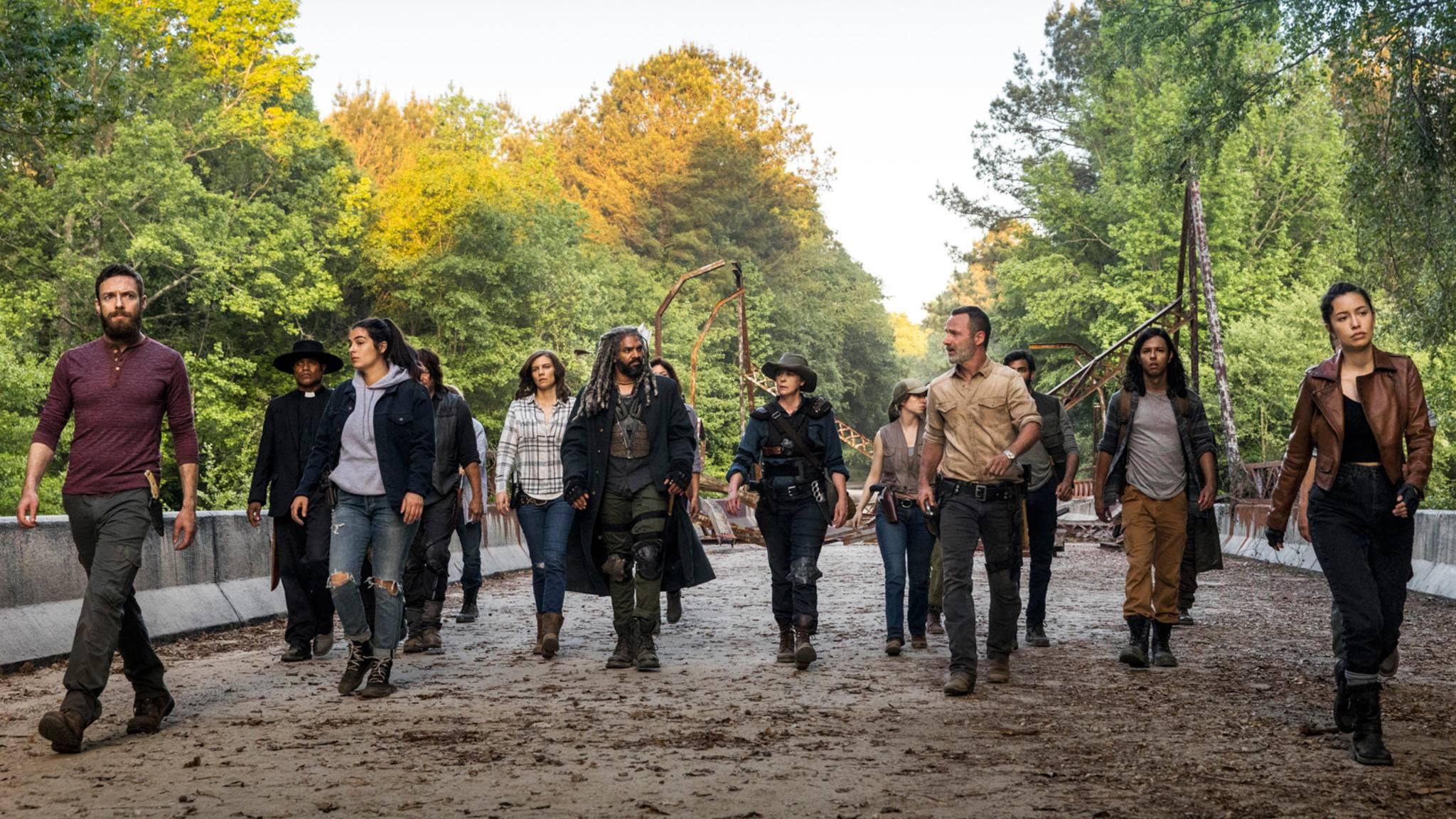 """In Staffel 9 wartet auf die """"The Walking Dead""""-Survivor ein neues Leben – und neue Gefahren."""