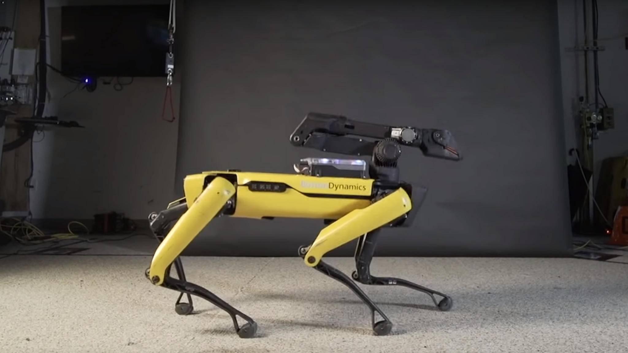 Den Roboterhund Spot gibt es bald zu kaufen