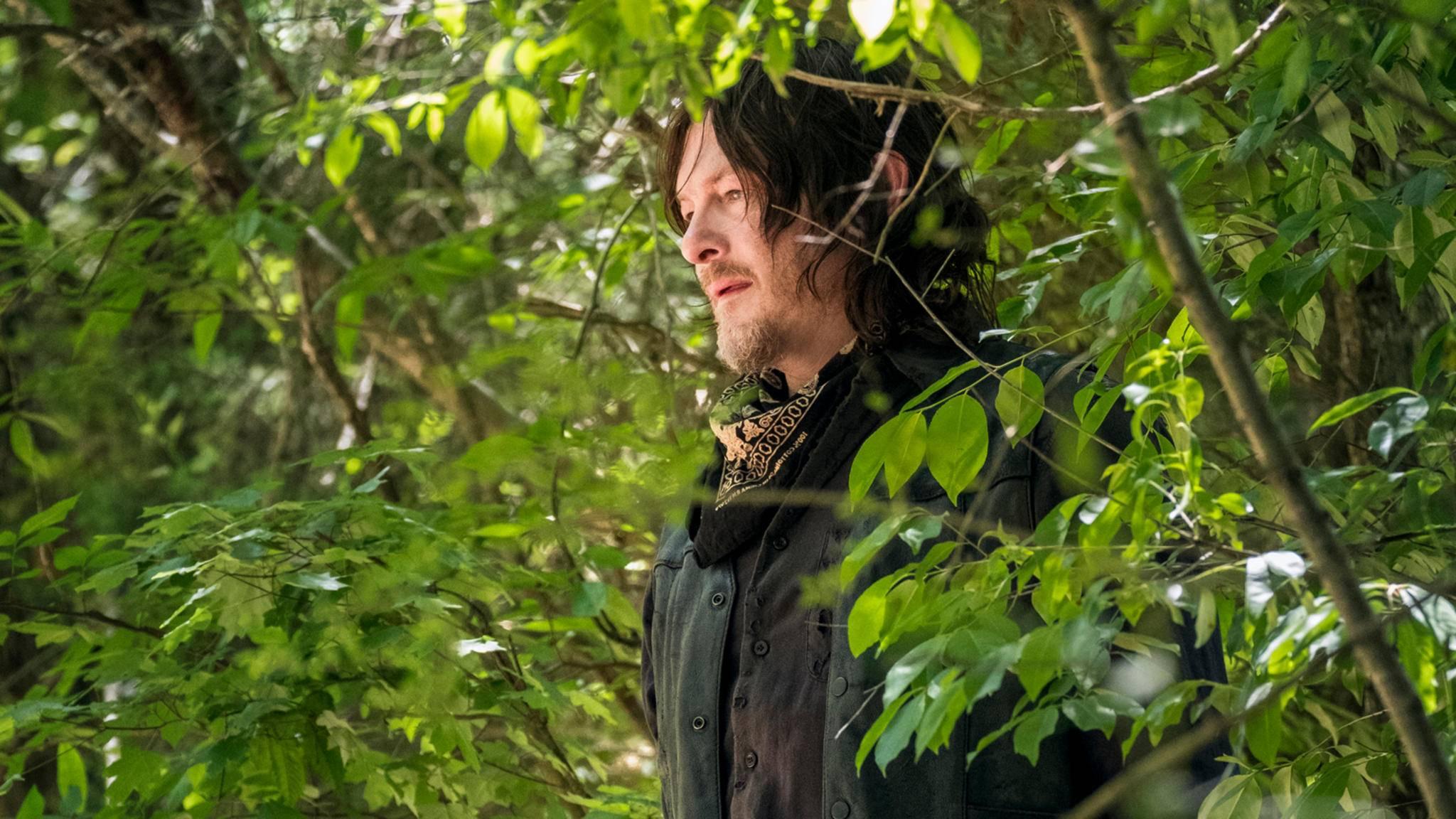 Daryl bekommt offenbar vierbeinigen Zuwachs.