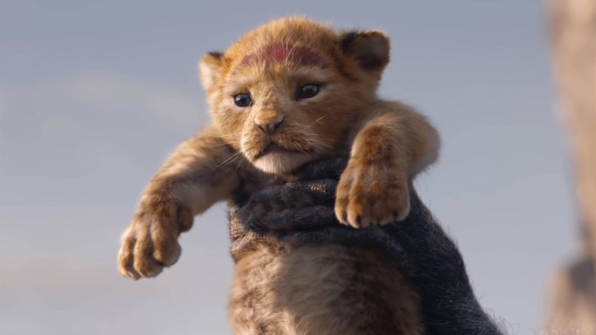 Löwenkönig Simba herrscht 2019 wieder über die große Leinwand – und er ist nicht allein.