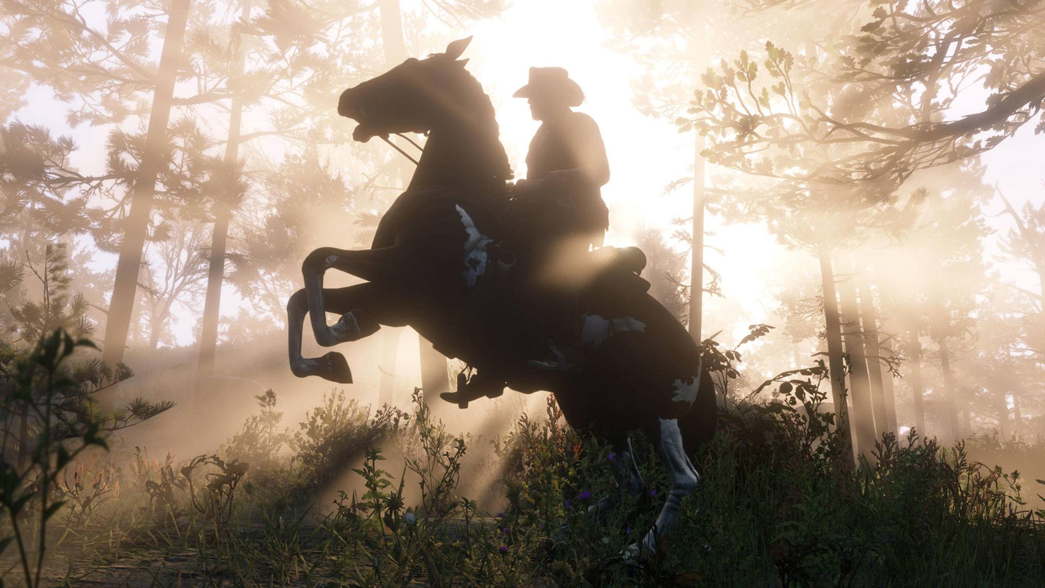 red-dead-redemption-2-screenshot-press