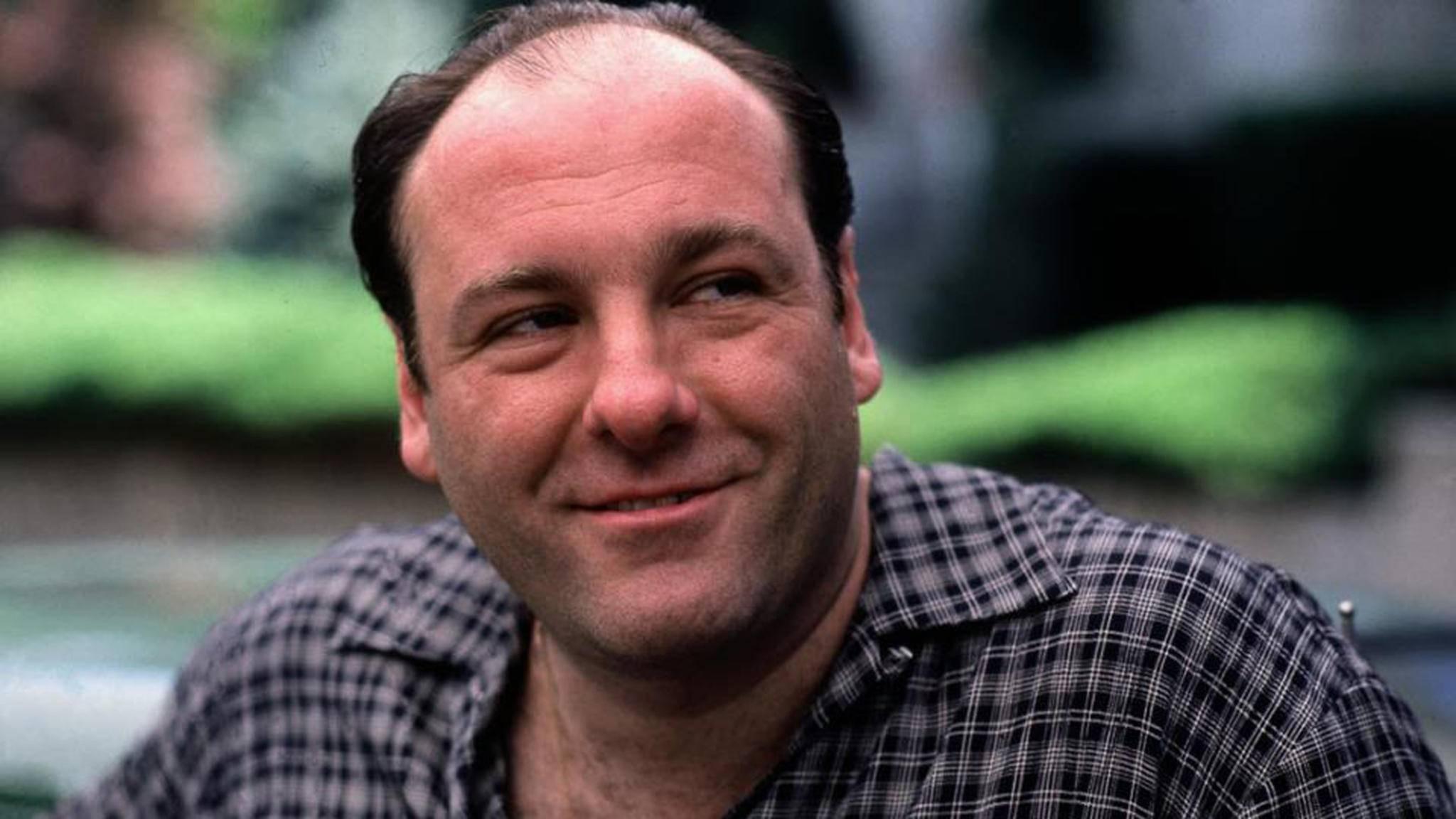 Wie verlief wohl die Kindheit von Tony Soprano? Wir erfahren es hoffentlich bald.