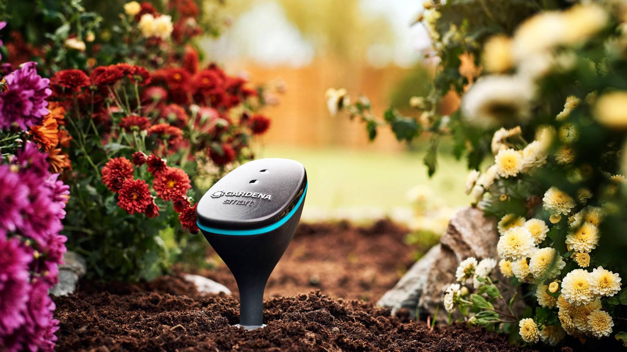 Smarte Bewässerungssysteme von Anbietern wie Gardena nehmen Dir im Garten viel Arbeit ab.