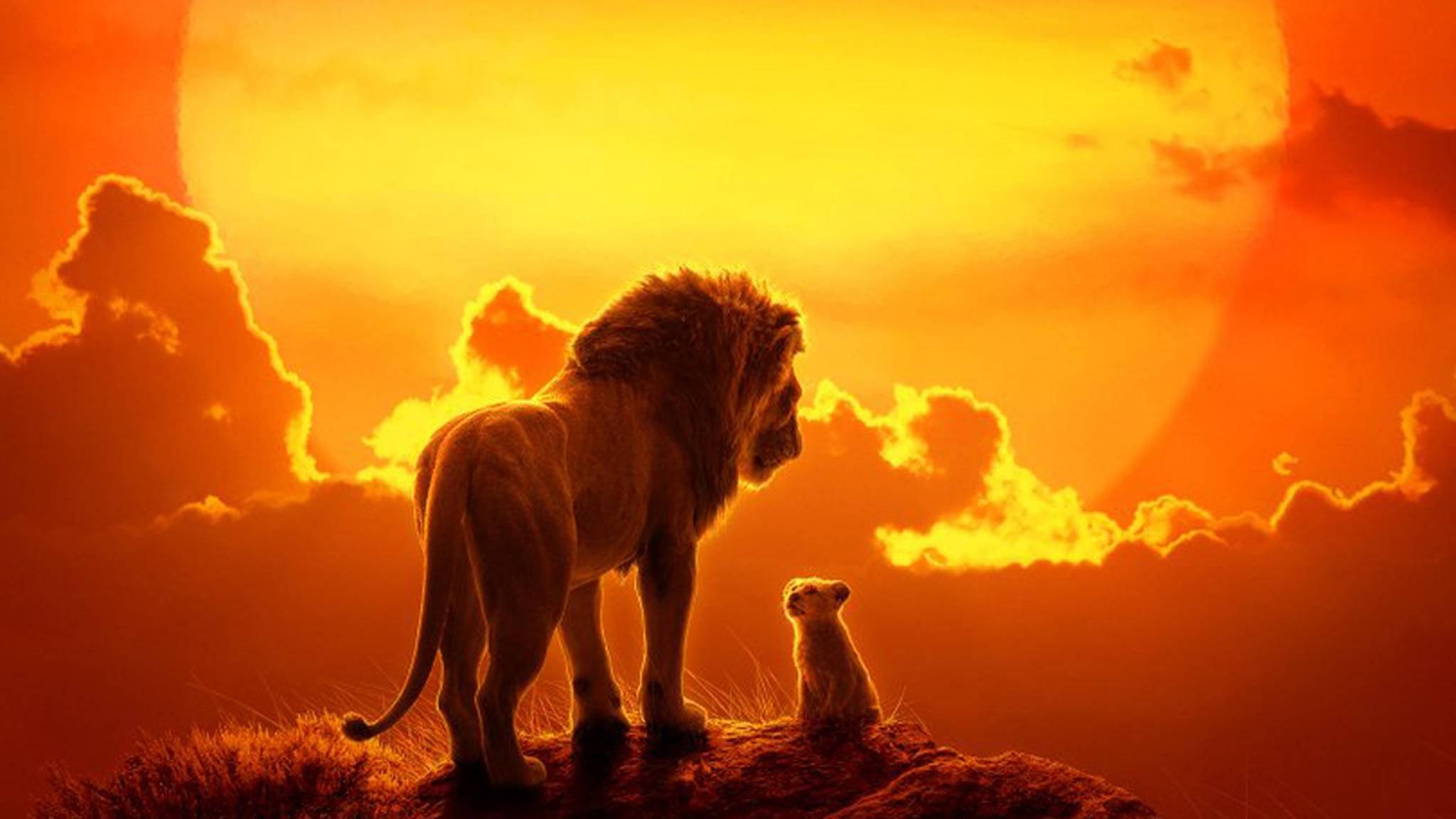 """Ob Zeichentrick oder Live-Action-Remake: """"Der König der Löwen"""" zieht in jeder Form die Zuschauer in seinen Bann."""