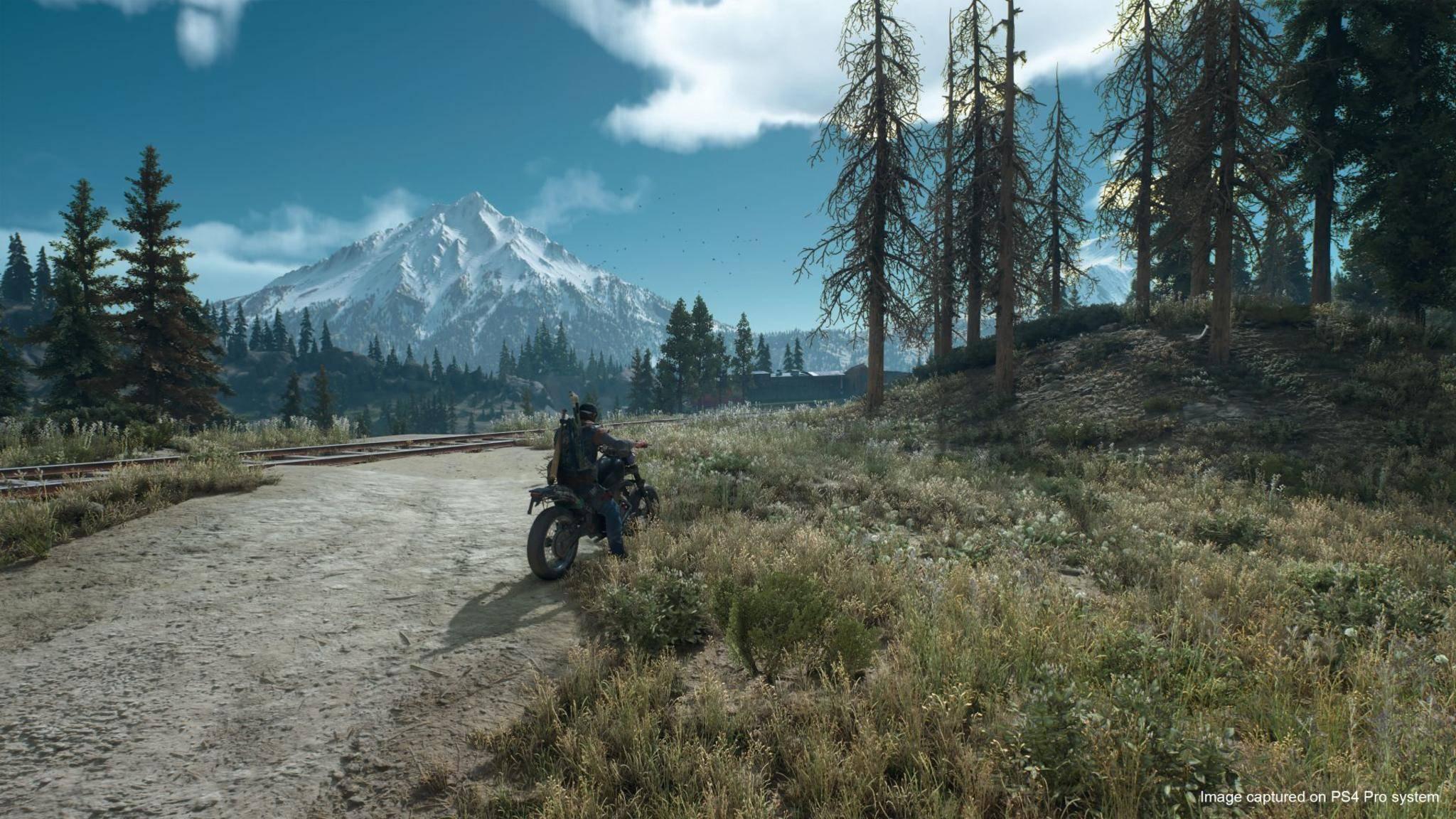 """""""Days Gone"""": Preload gestartet, so viel Platz braucht das PS4-Game"""