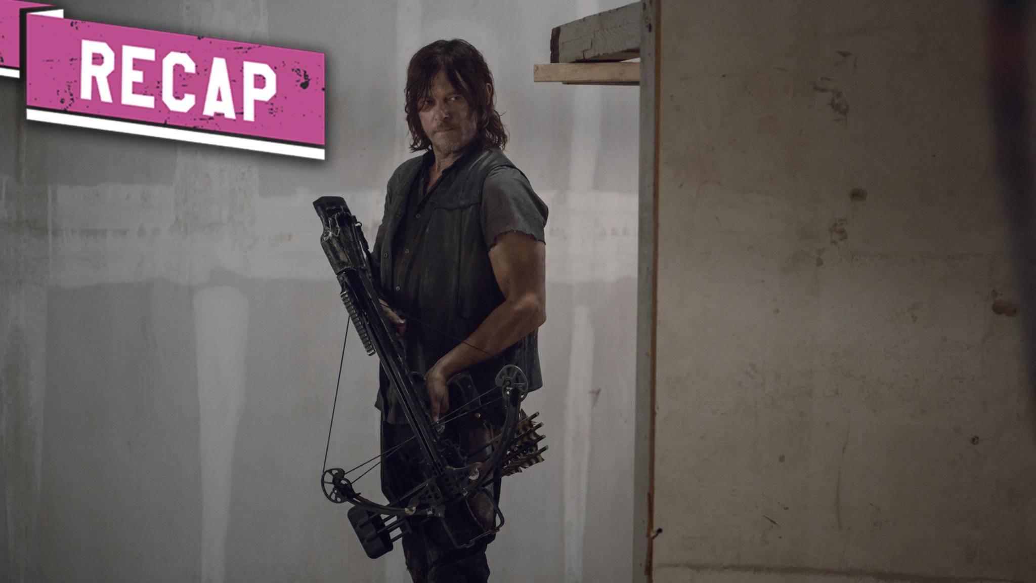 """In Episode 13 von """"The Walking Dead""""-Staffel 9 muss es Daryl mit Beta aufnehmen."""