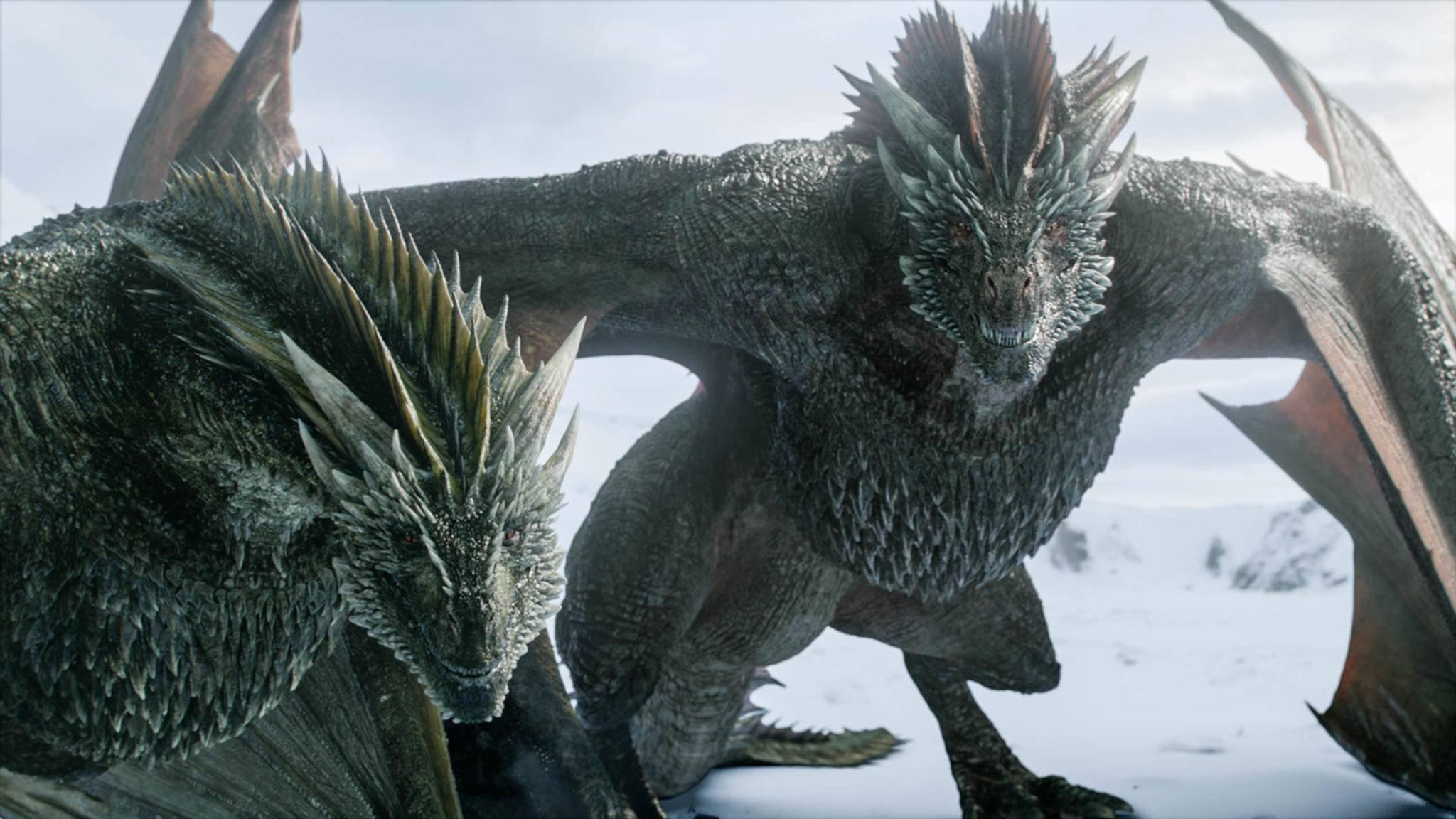 """Rhaegal und Drogon werden wir in """"House of the Dragon"""" nicht zu sehen bekommen. Aber vielleicht einige ihrer Vorfahren?"""