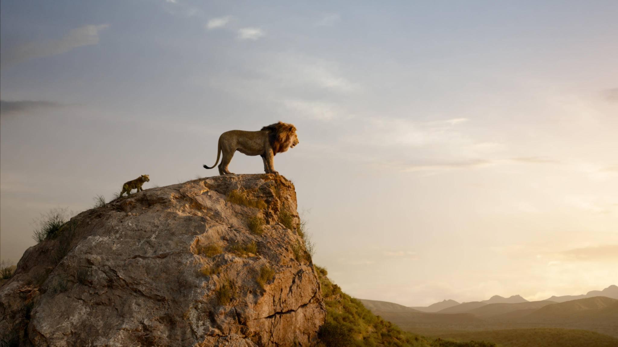 """Fast alles sieht in """"König der Löwen"""" lebensecht aus. Doch ist es das auch?"""