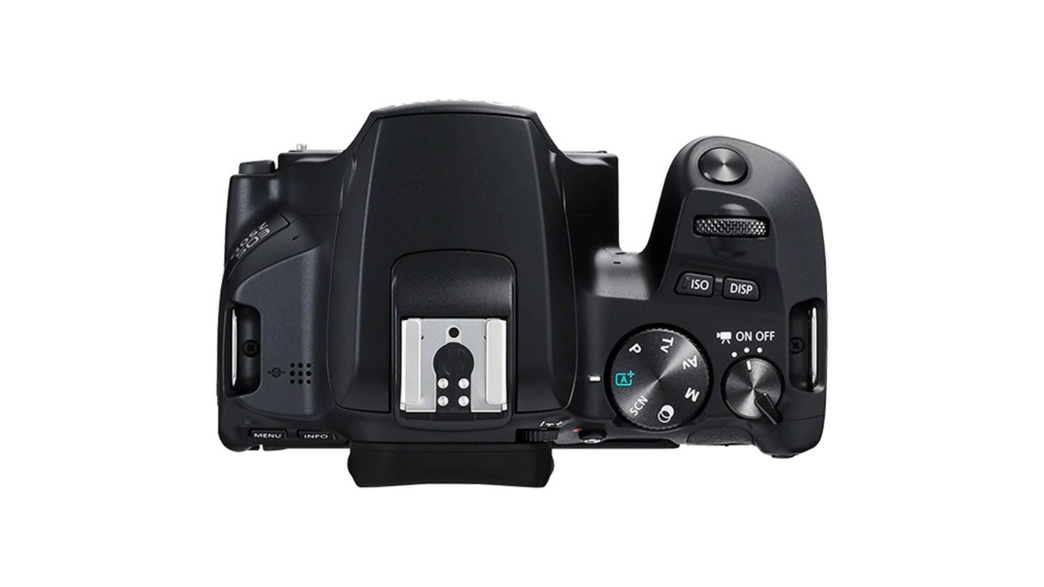 Bei der Einsteiger-DSLR Canon EOS 250D fehlt der mittlere Kontakt für Drittanbieter-Blitze.