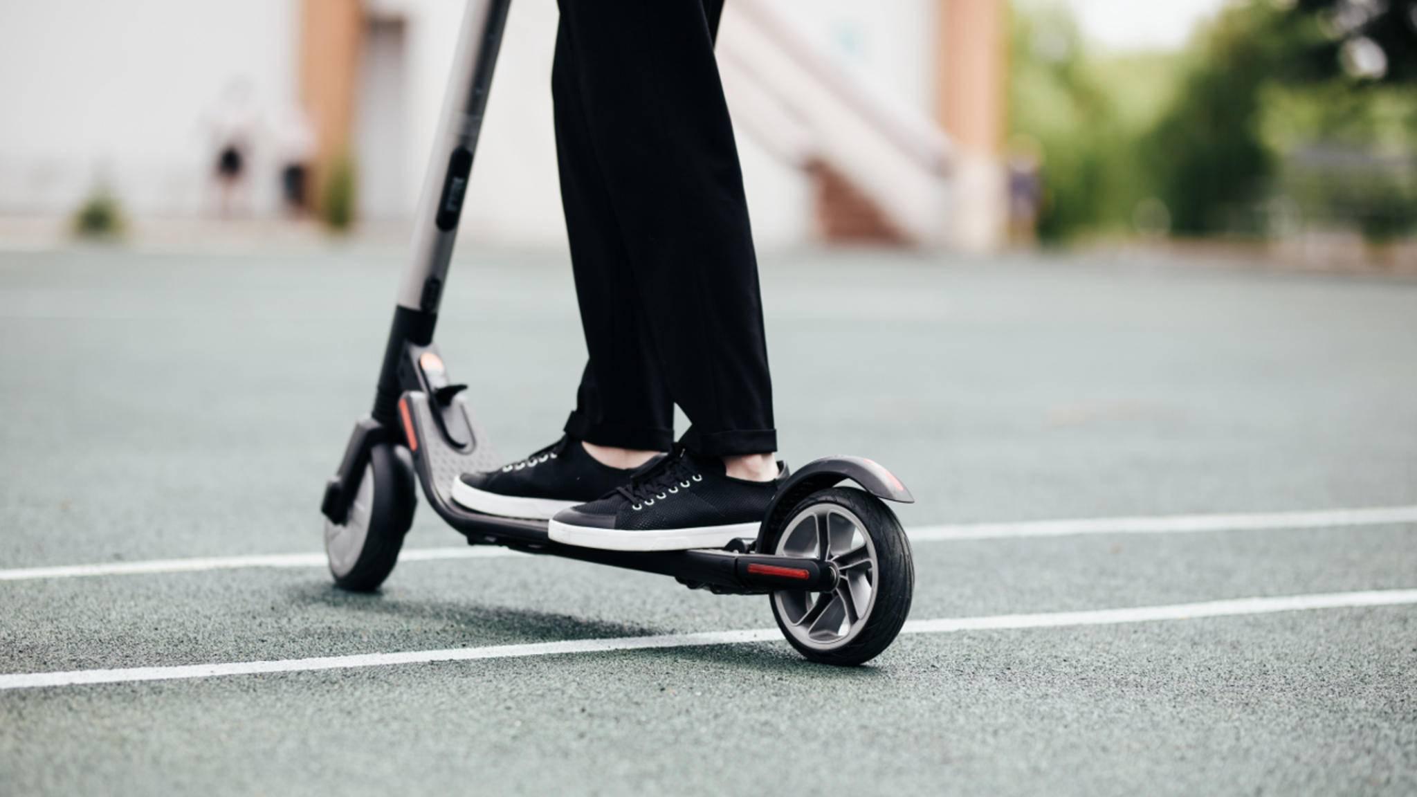 Du willst Dir einen E-Scooter zulegen? Wir haben uns sieben interessante Modelle etwas genauer angeschaut.