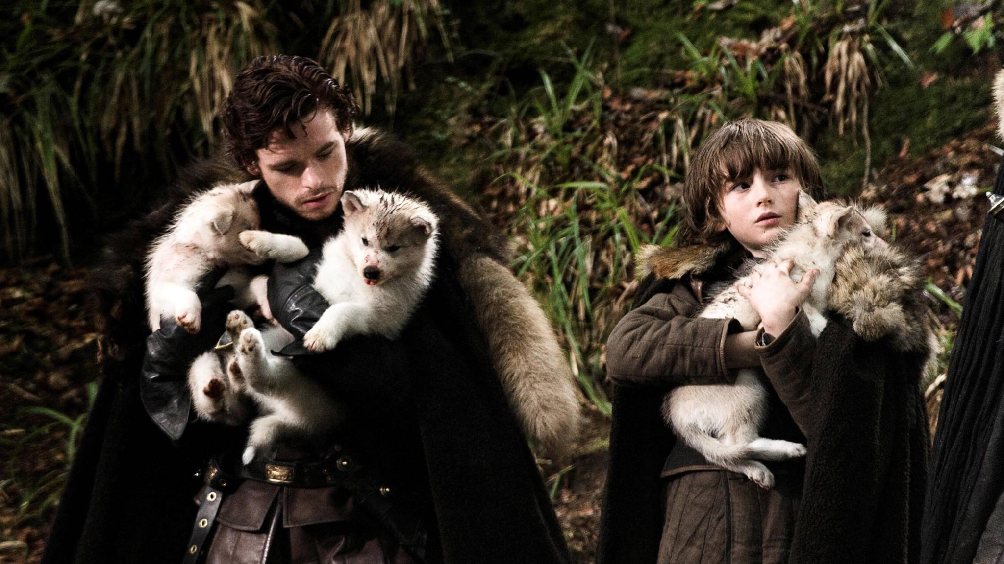 """Starks und Schattenwölfe werden auch im """"GoT""""-Spin-off zu sehen sein."""