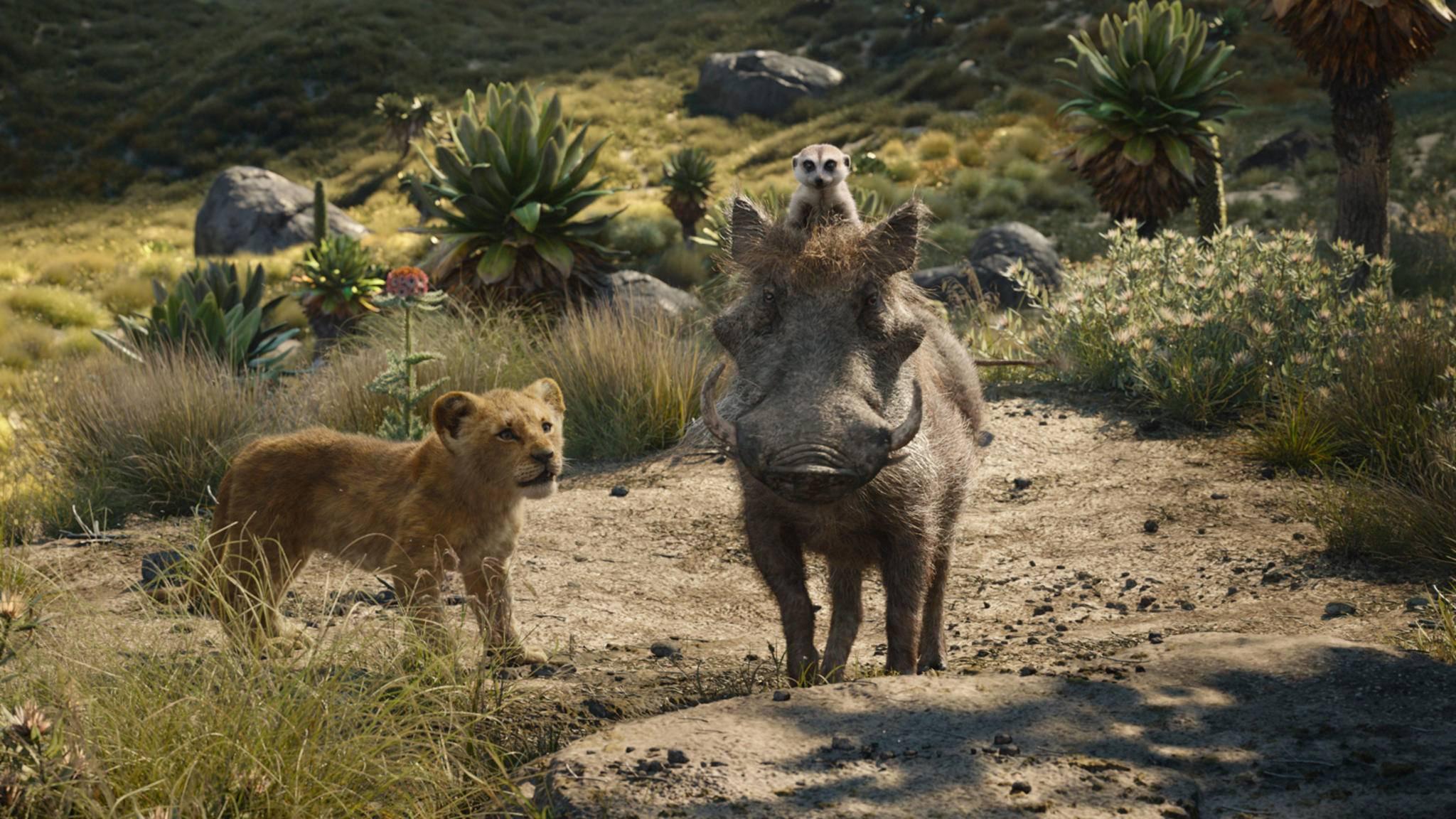 """""""Ey Timon und Pumbaa, uns gibt's jetzt auf DVD und Blu-ray!"""""""