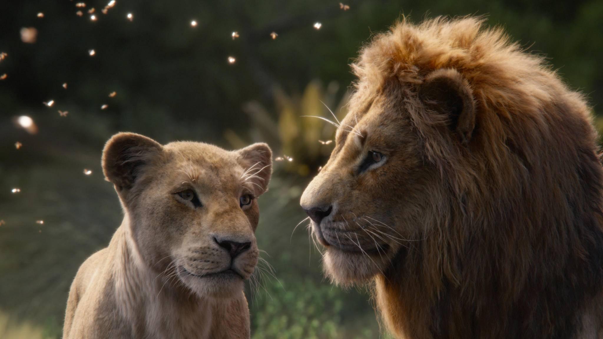 der-könig-der-löwen-nala-simba-2