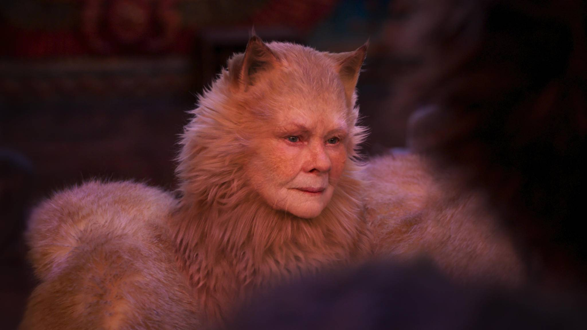 Cats Judi Dench