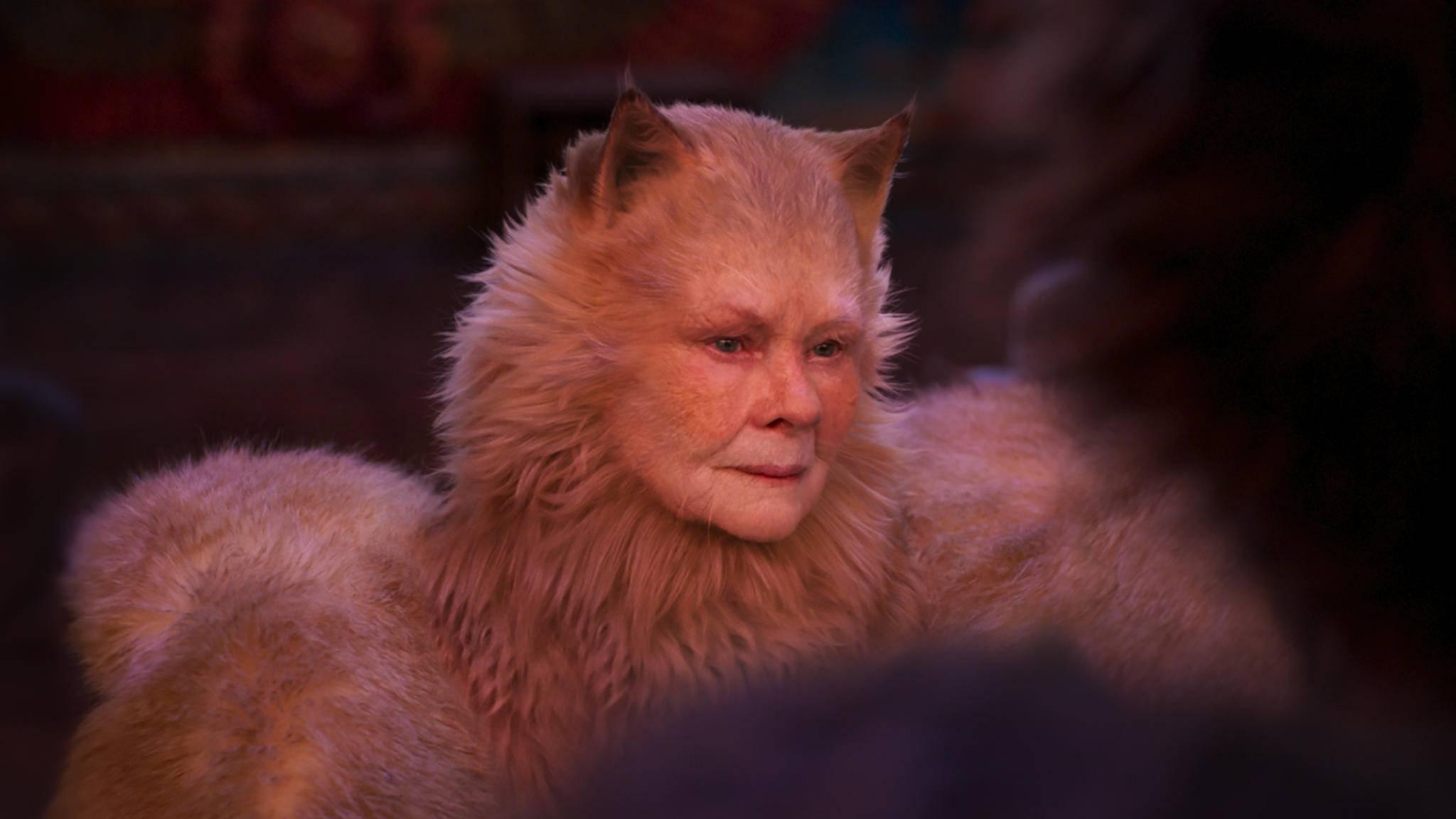 Cats Judi Dench