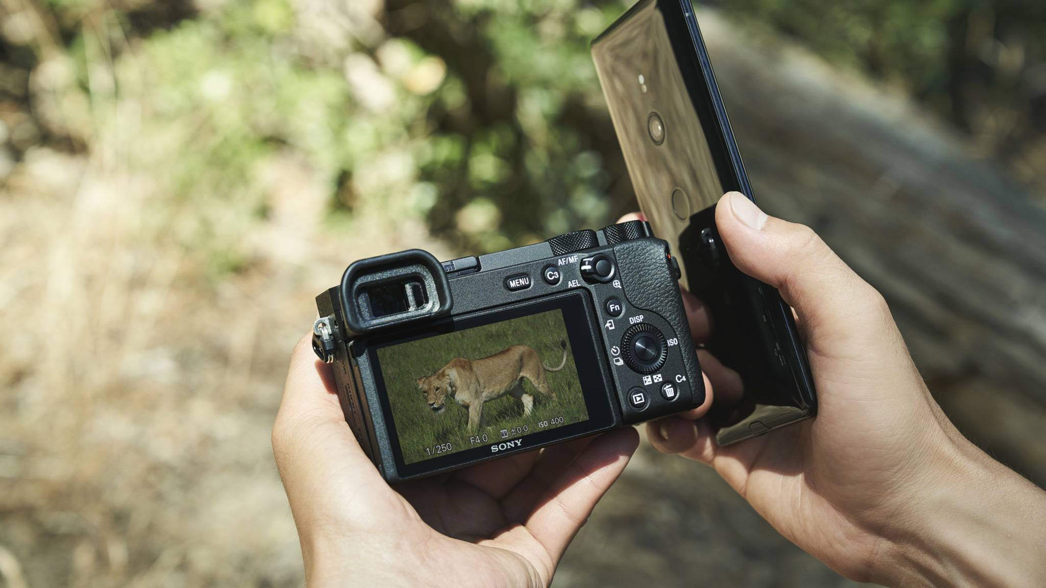 Sony-A6600-Smartphone