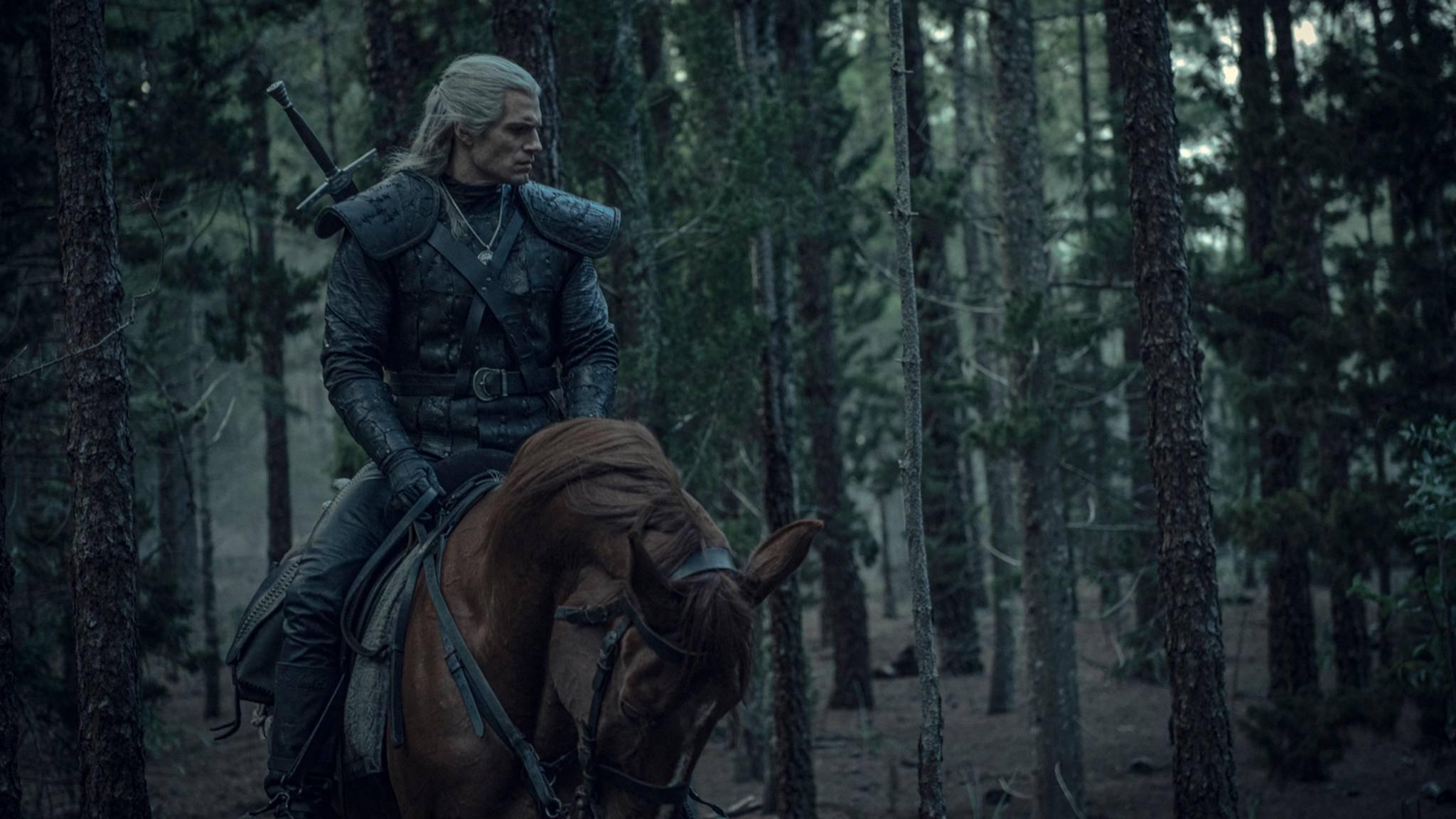 The Witcher Geralt von Riva Plötze