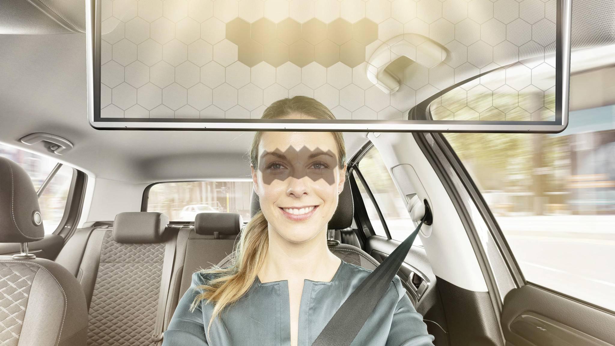 bosch-virtual-visor