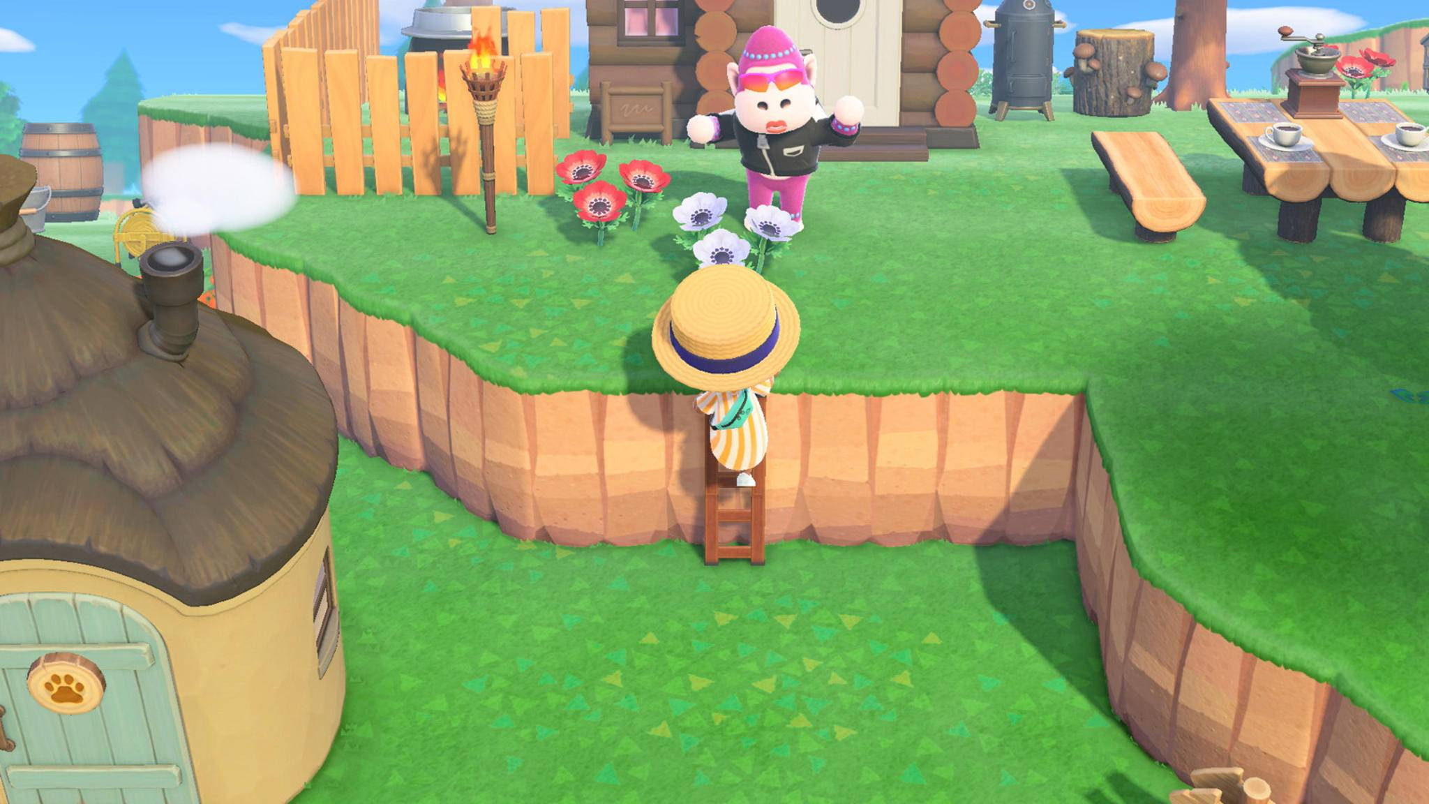 Animal Crossing New Horizons Leiter