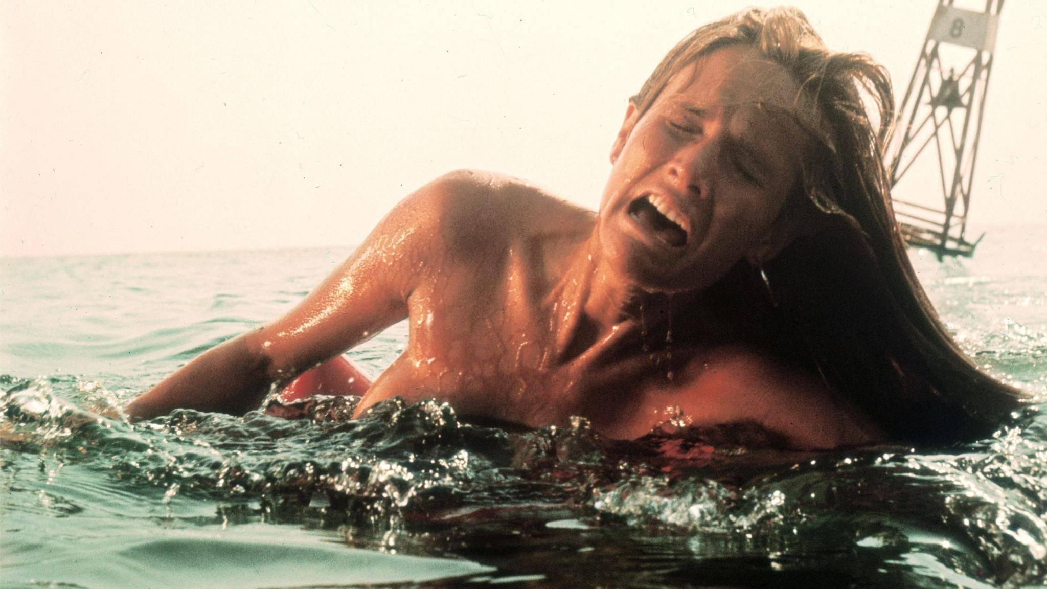 Dieser Film hat mehr für das schlechte Image von Haien getan als jeder tatsächliche Hai-Angriff.