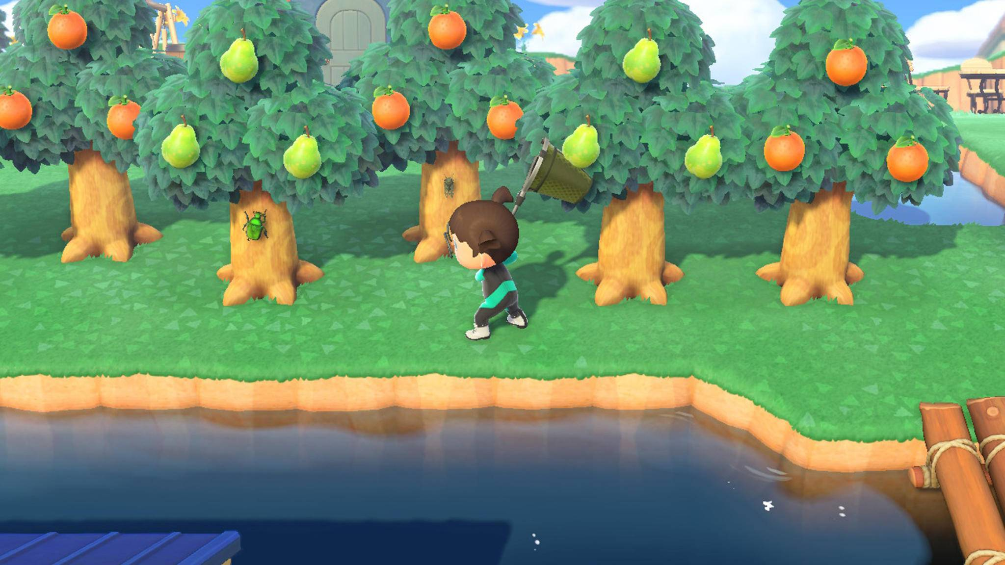 Animal Crossing New Horizons Käfer Zikade