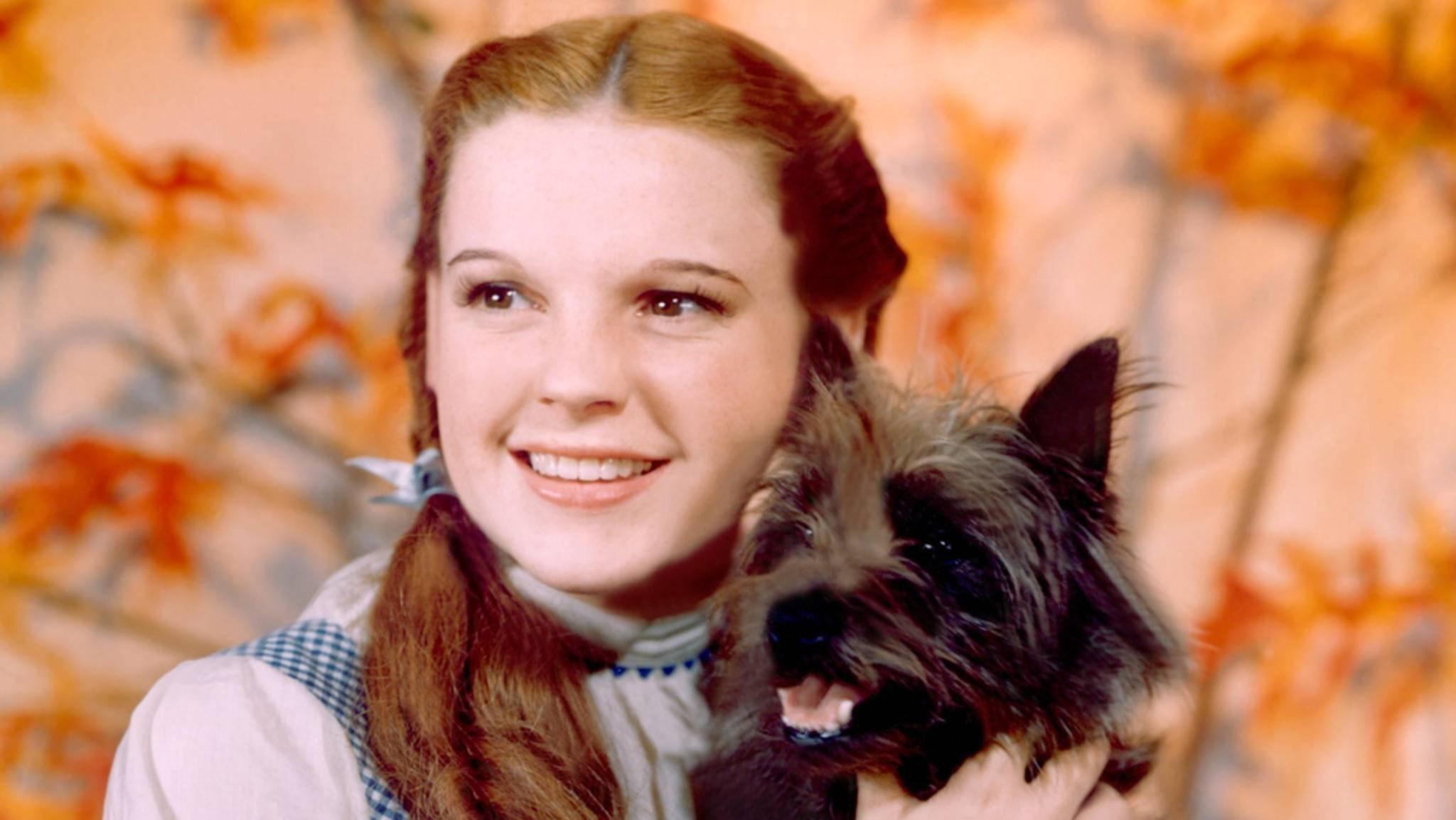 Der Zauberer von Oz 1939 Judy Garland und Toto