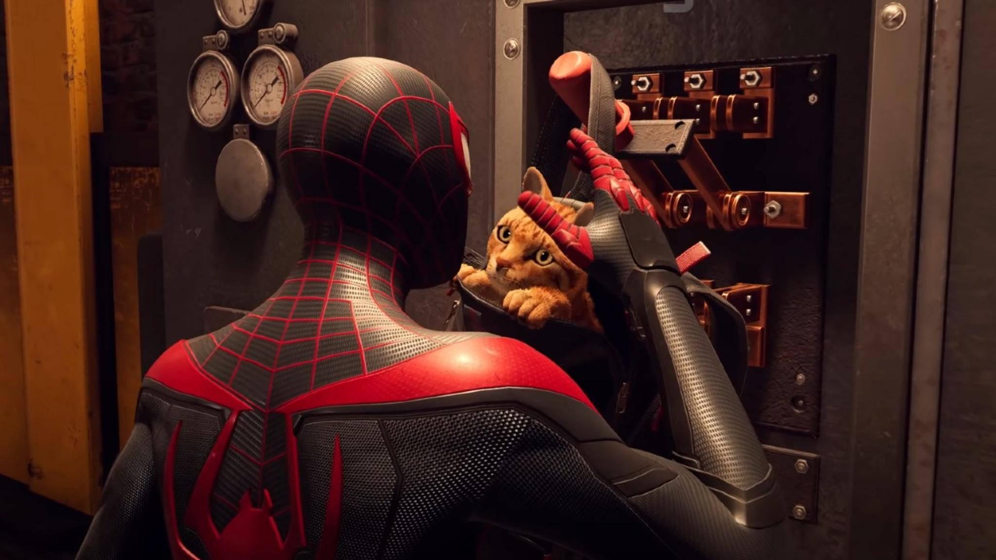 spider-man-miles-morales-katze-screenshot