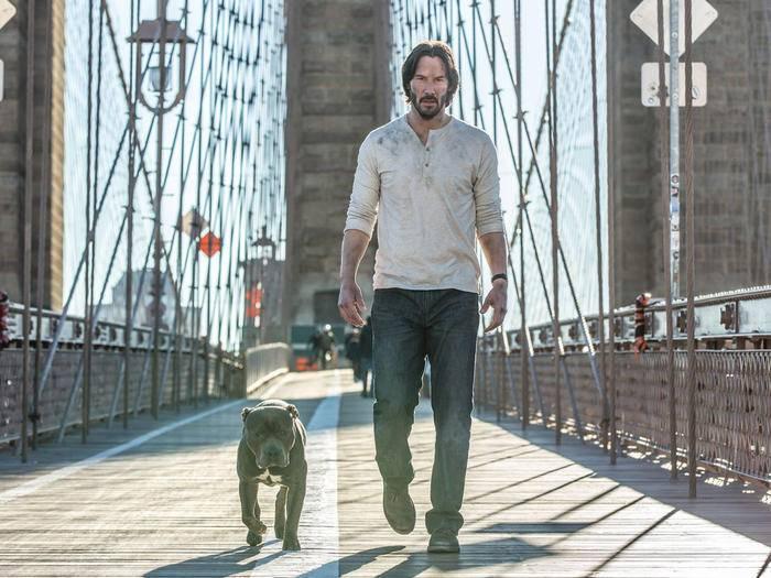"""Auf den Hund gekommen: Auch im Sequel """"John Wick: Kapitel 2"""" hat der Ex-Killer wieder einen treuen Vierbeiner an der Seite. Hoffentlich für länger."""