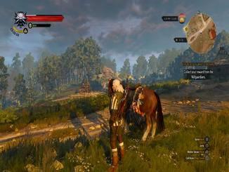 Am Ende baumelt dessen Kopf an Geralts Pferd.