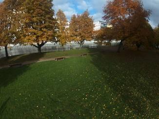 Eine originale Bildaufnahme der Bebop Drone (Fotomodus).